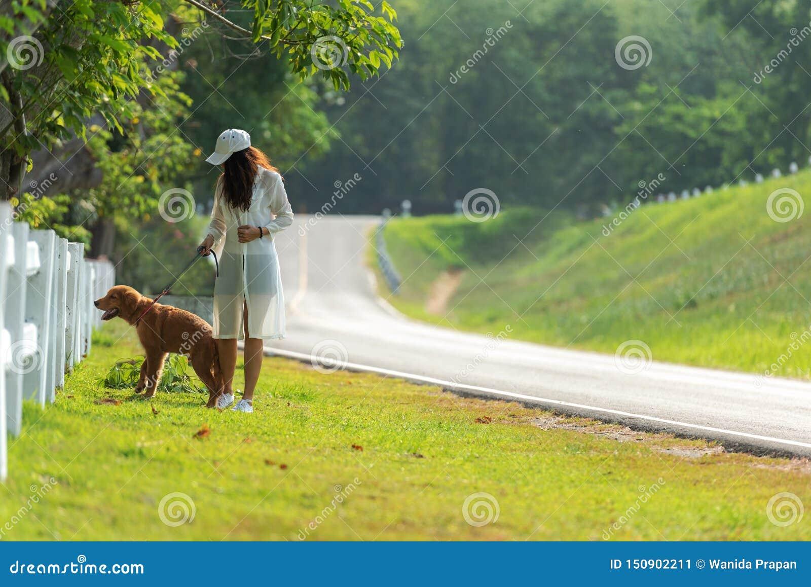 Femme asiatique de mode de vie marchant si heureux avec le chien d amitié de golden retriever près de la route