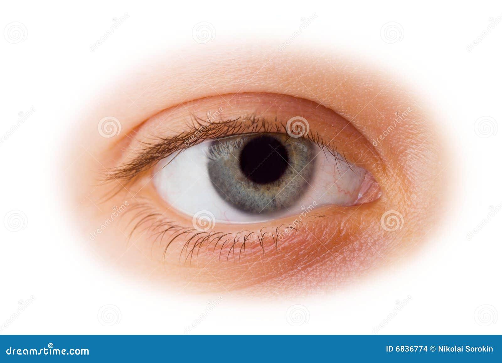 Femme d oeil