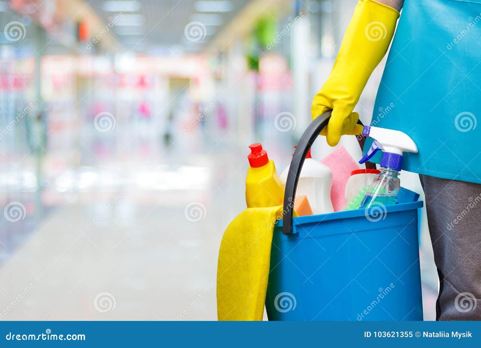 Femme de ménage avec des produits d un seau et d entretien