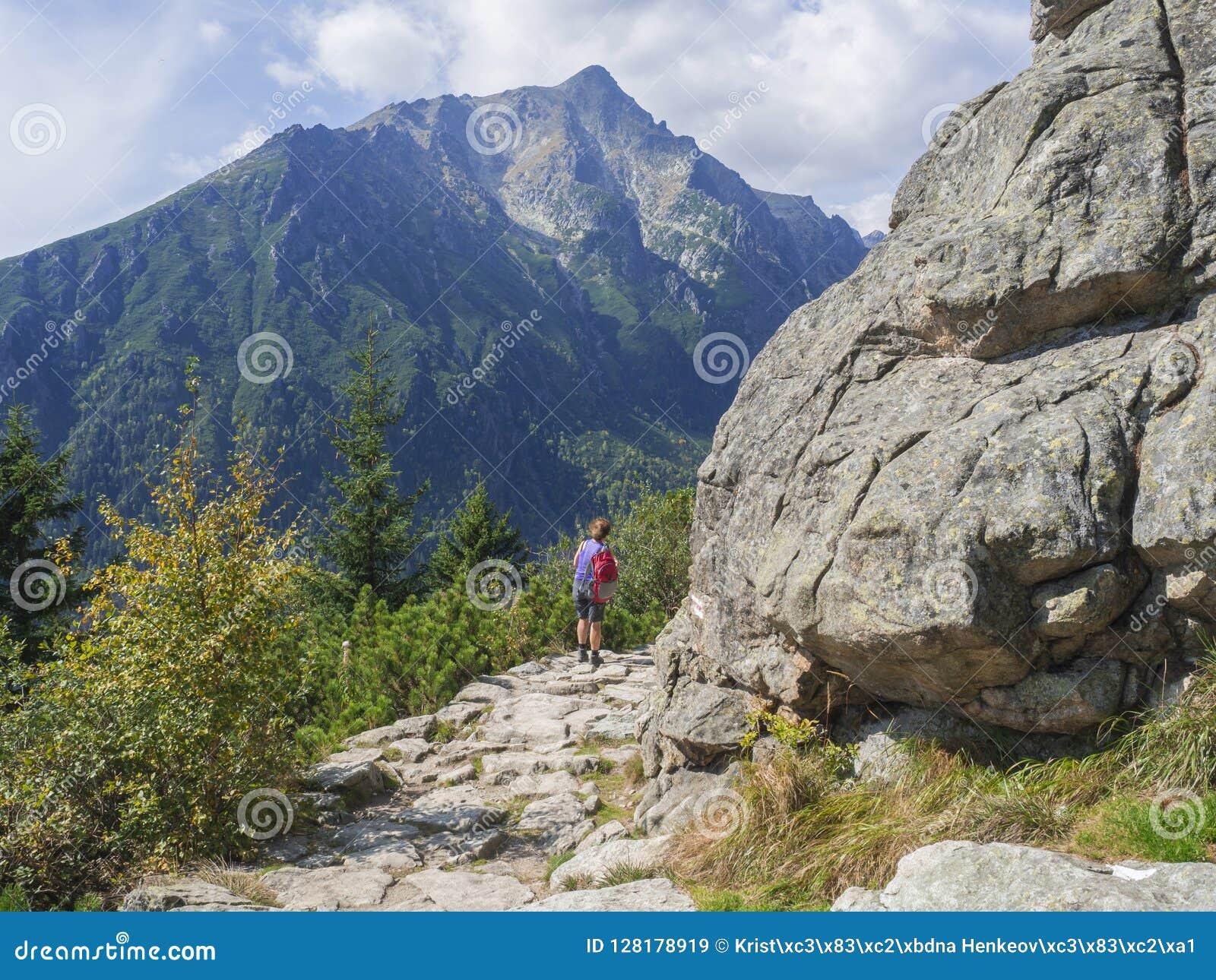 Femme de touristes supérieure trimardant au bel itinéraire aménagé pour amateurs de la nature à de hautes montagnes de tatra en S