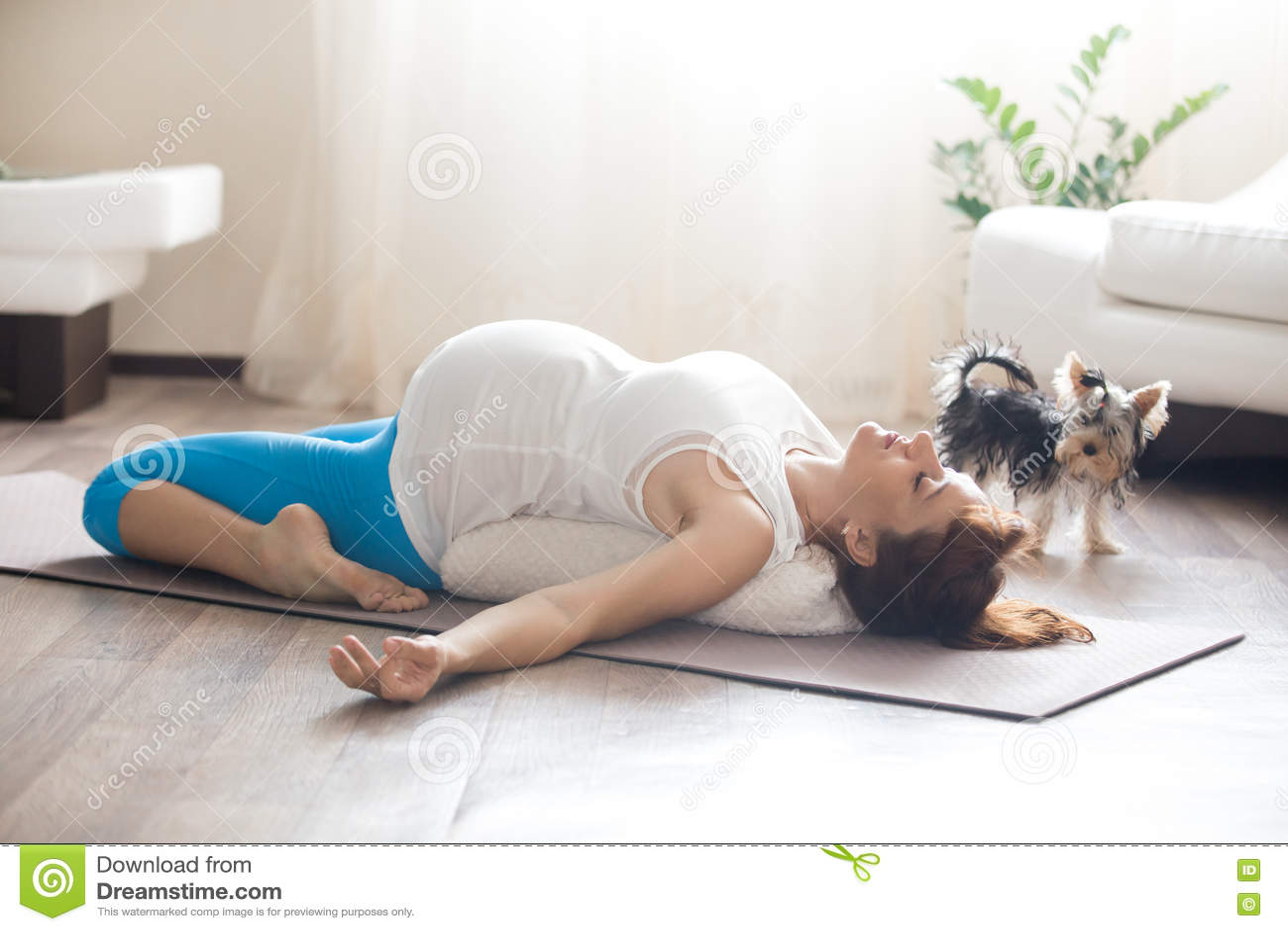 Femme Enceinte Et Son Chien Faisant Le Yoga A La Maison