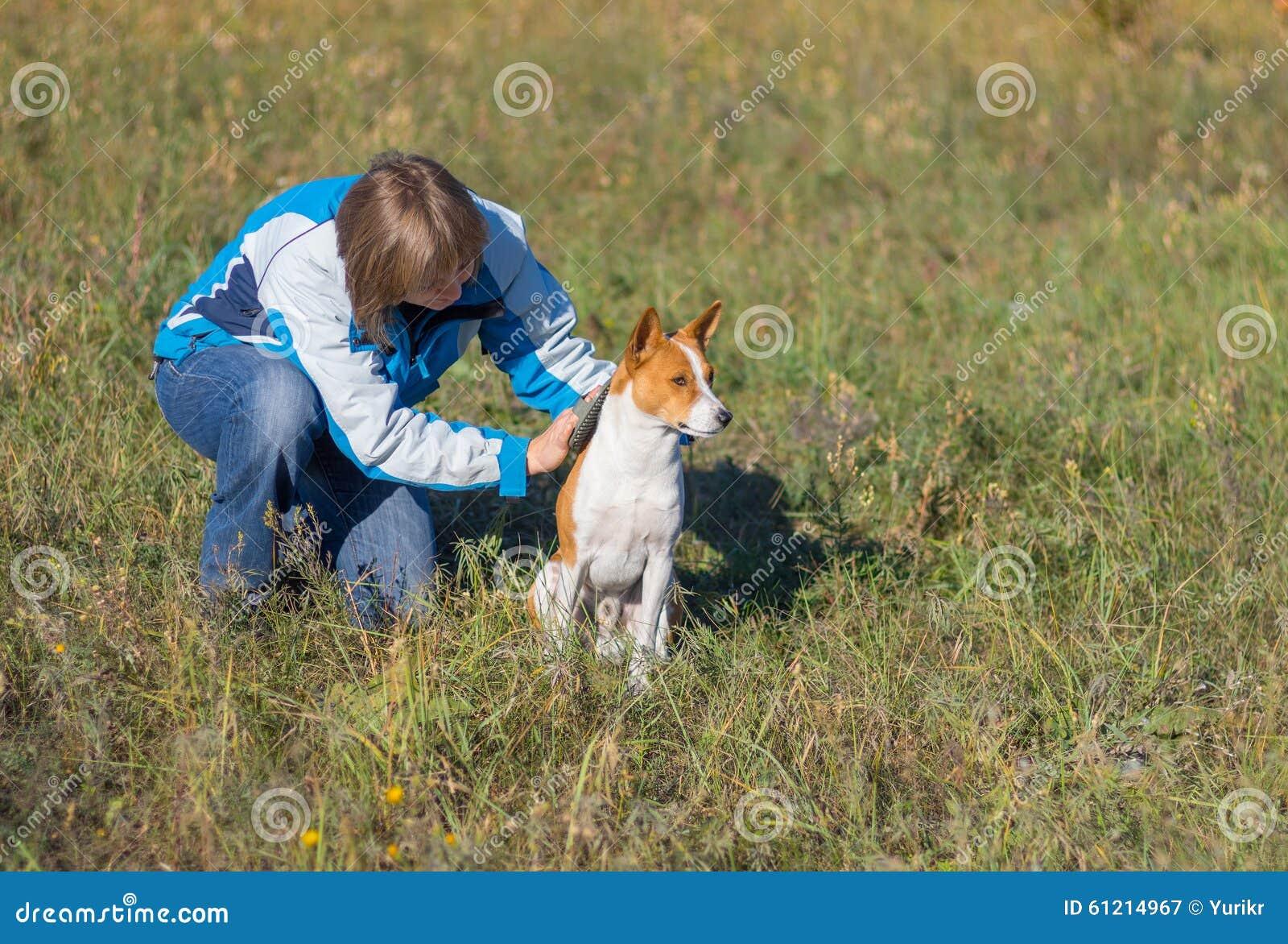 Le chien au quotidien