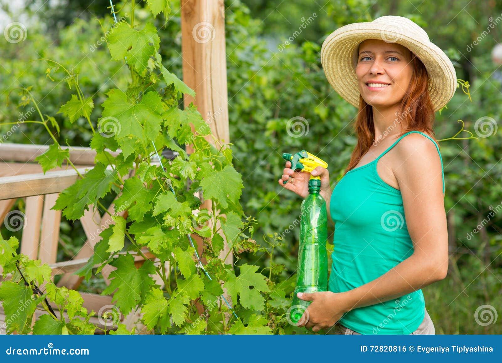 Femme injectant la solution de raisins