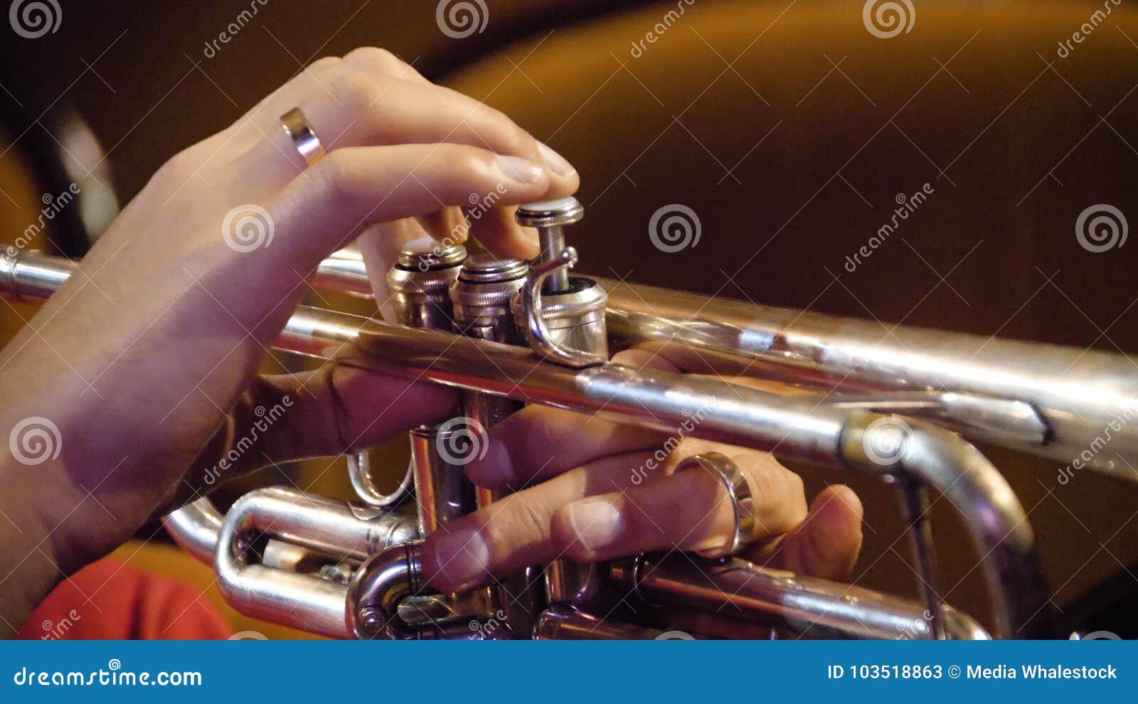 Femme jouant la trompette Joueur de trompette Trompettiste jouant l instrument de jazz de musique Instrument en laiton d orchestr