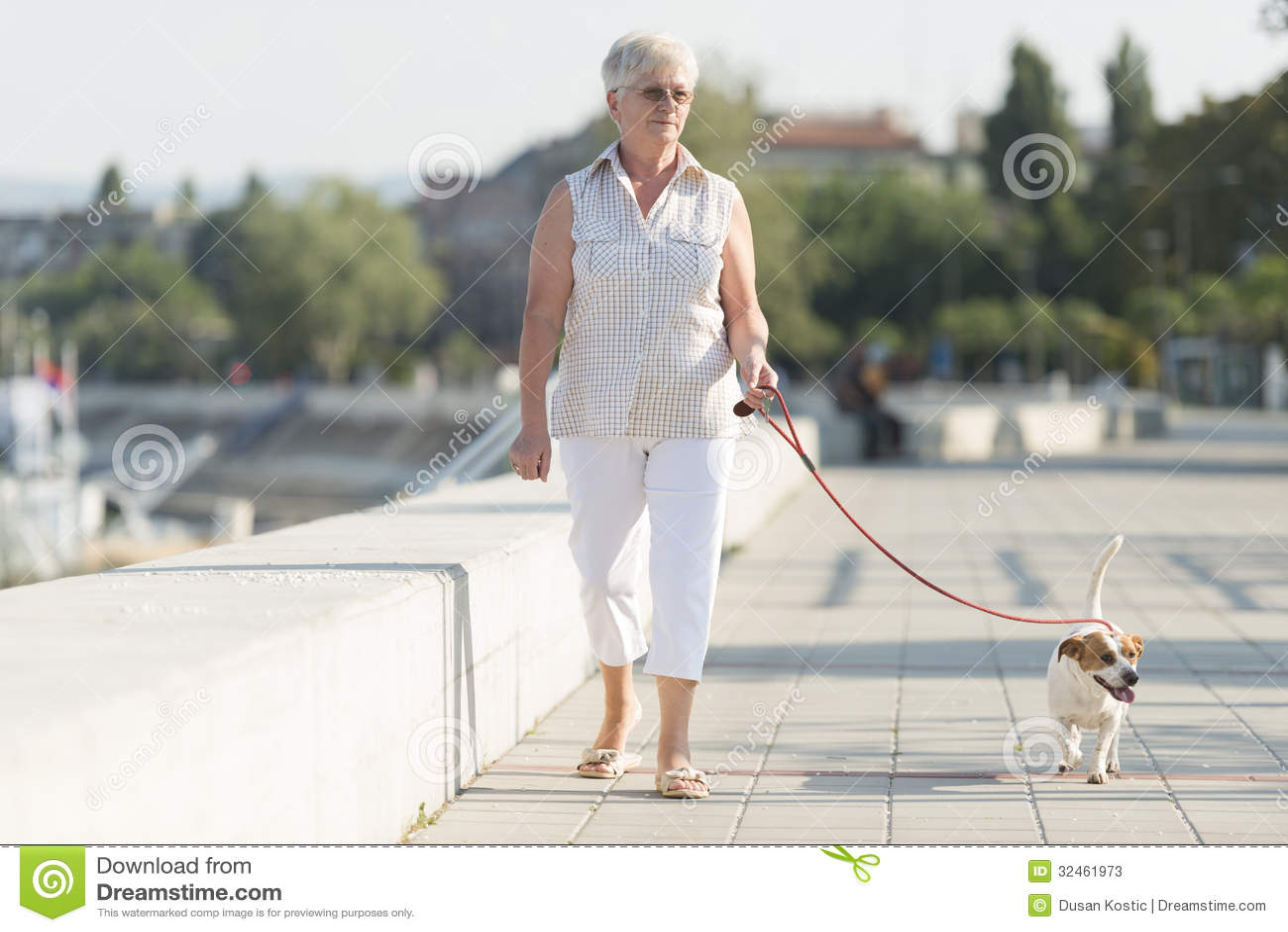 Femme supérieure et son chien