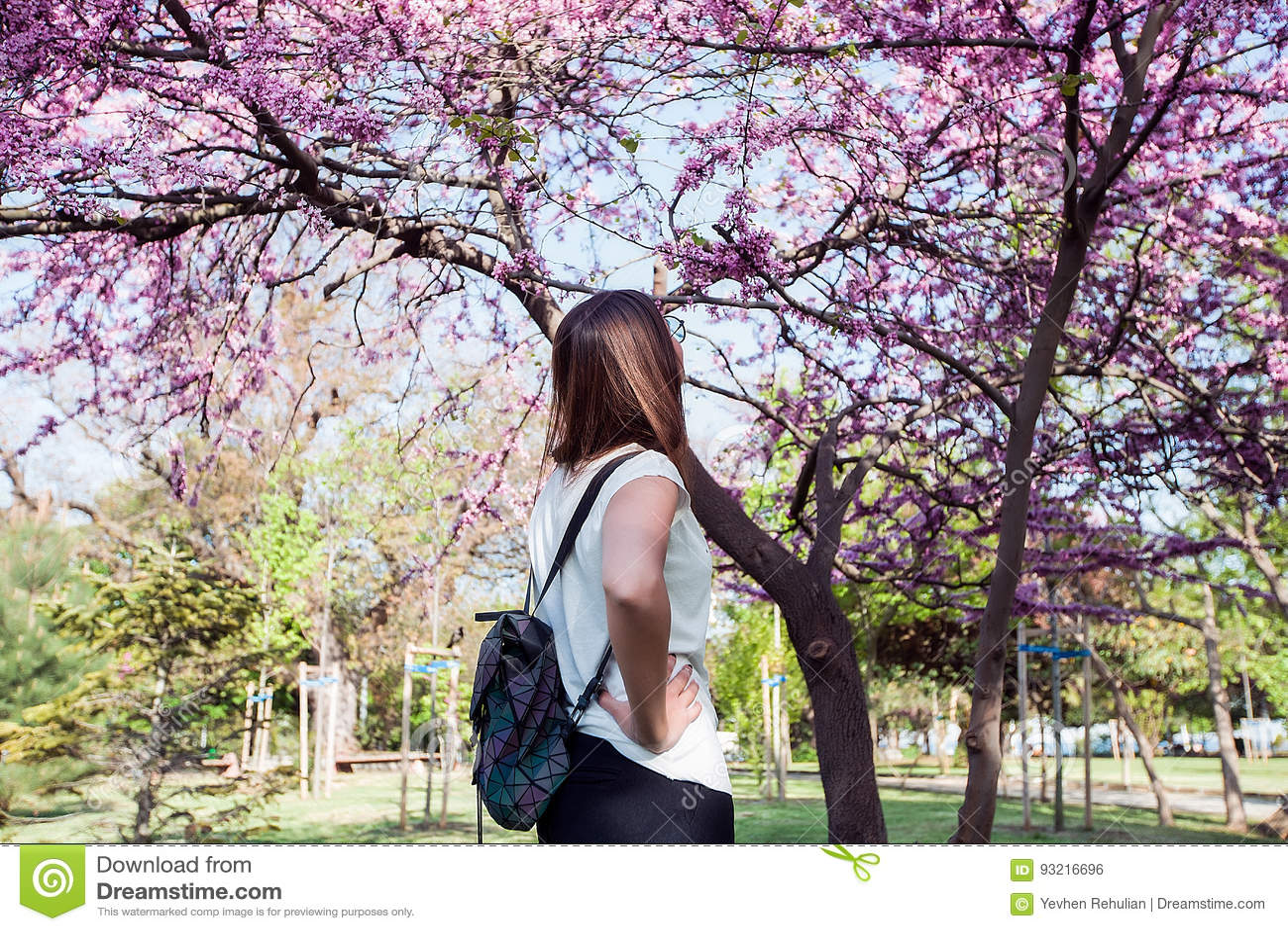 Femme sur le fond de floraison étonnant d arbre Sac à dos élégant, couleurs de ressort, fille de brune en parc, se reposant, chem