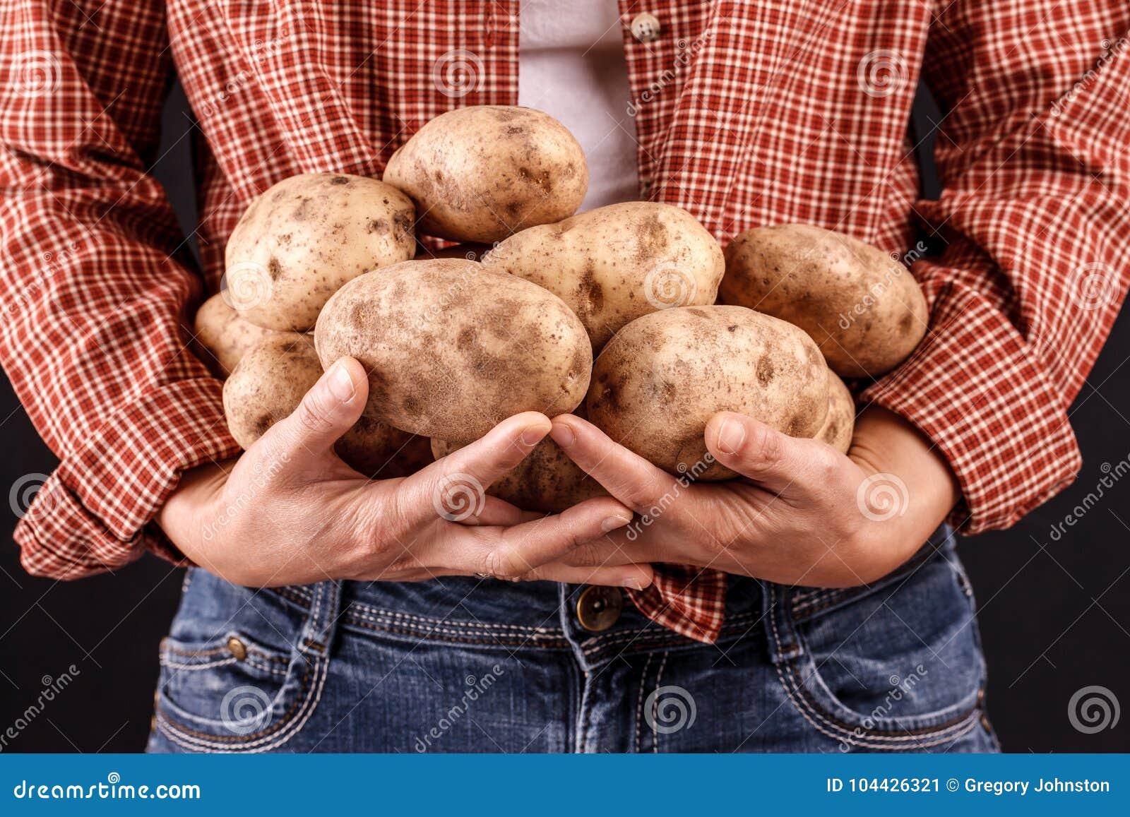 Femme tenant des pommes de terre dans des mains
