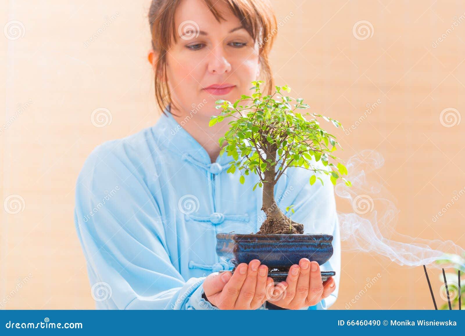 Femme tenant l arbre de bonsaïs