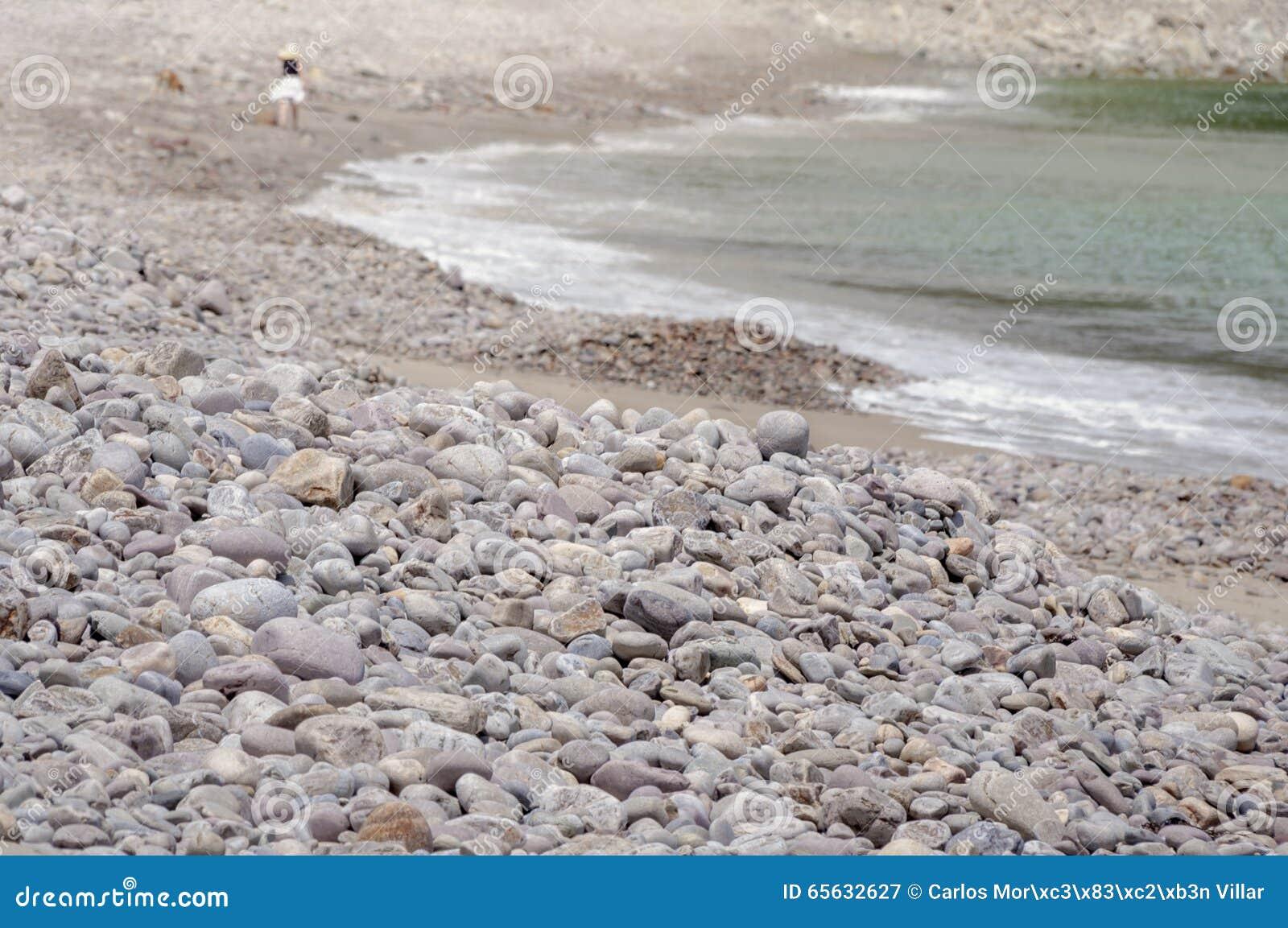Femmes marchant le long de la plage avec son chien