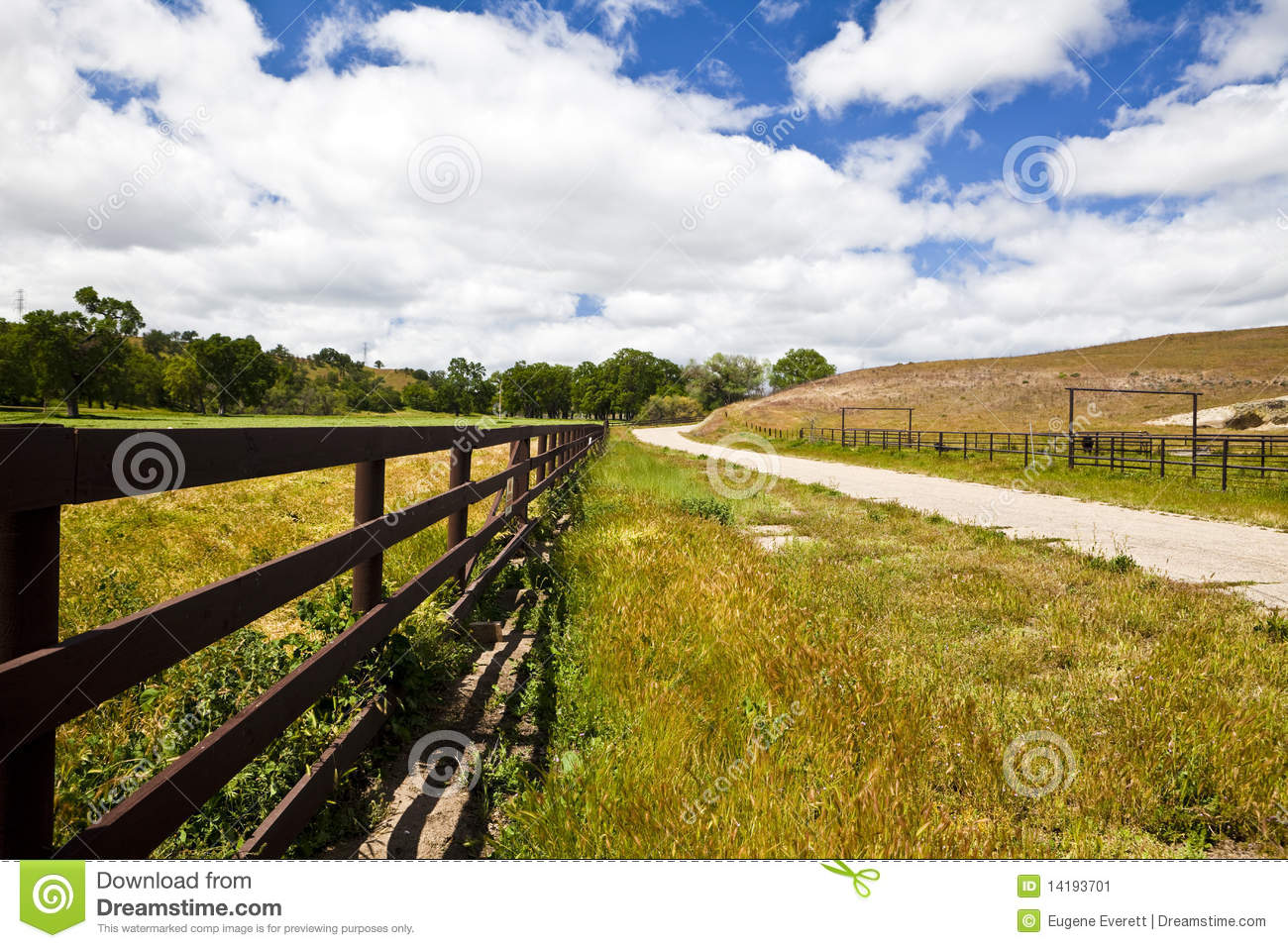Fence along a country road stock image
