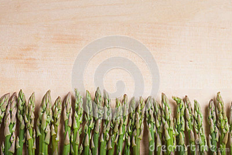 Download Fence from asparagus stock photo. Image of bunch, healthy - 89989550