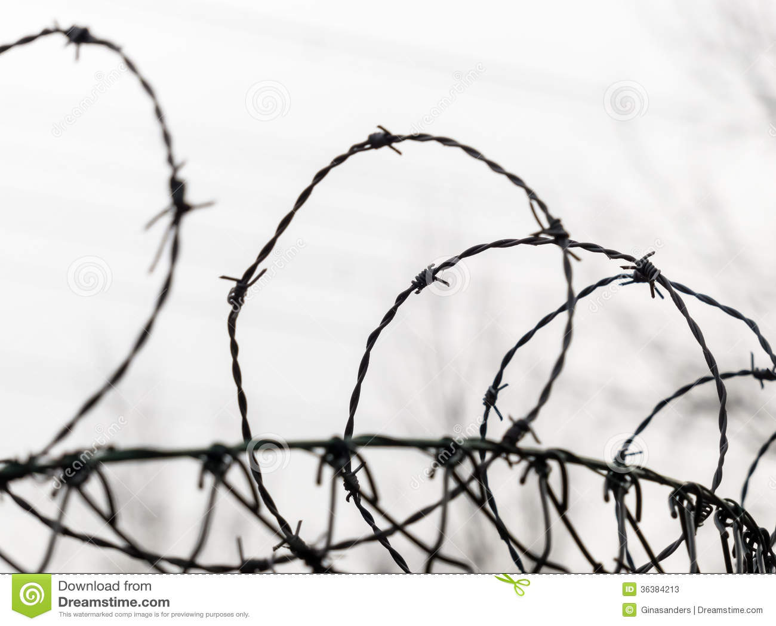 Prison Fence Wire