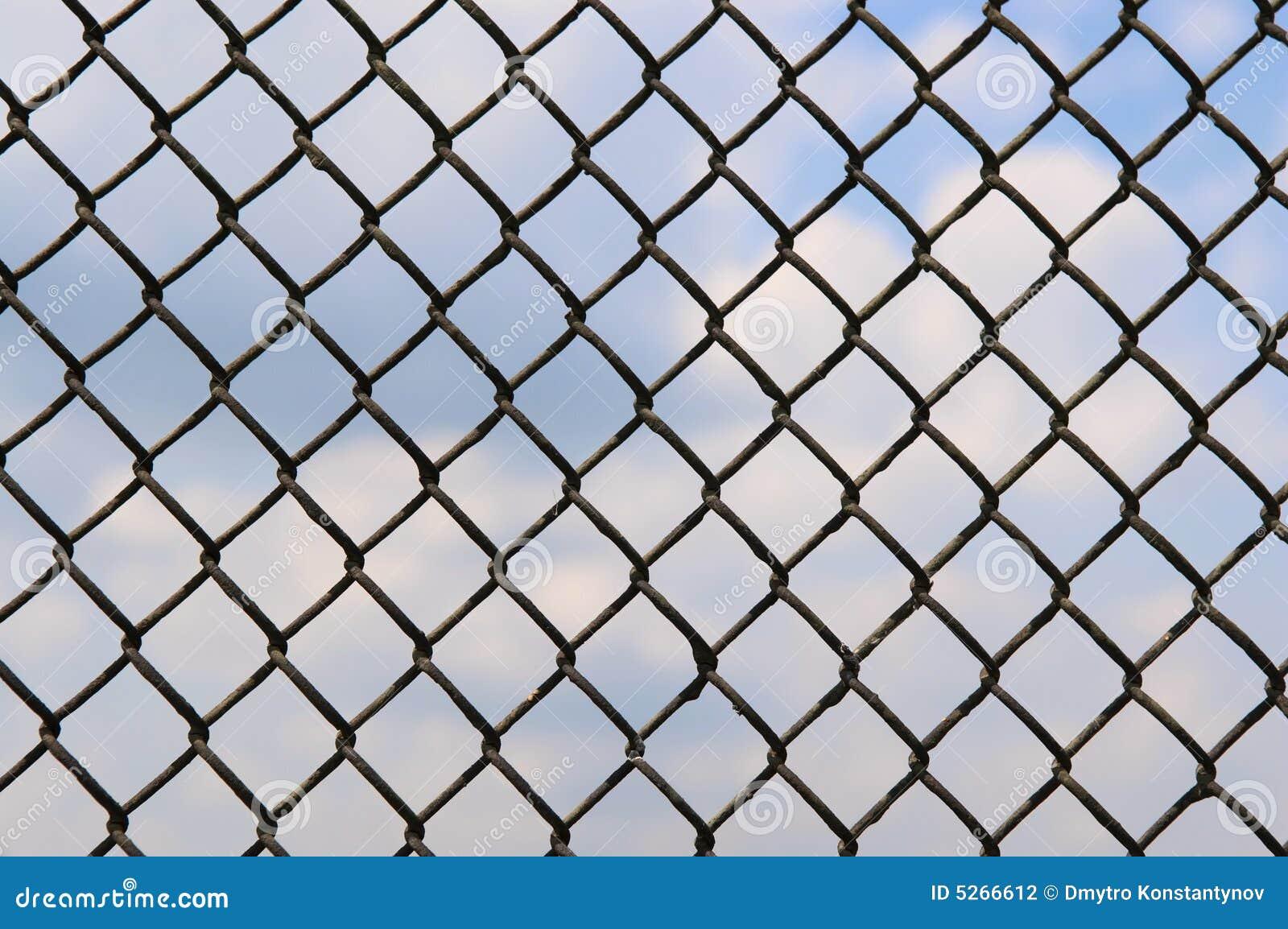 Fence Of Metallic Net Stock Photography Image 5266612