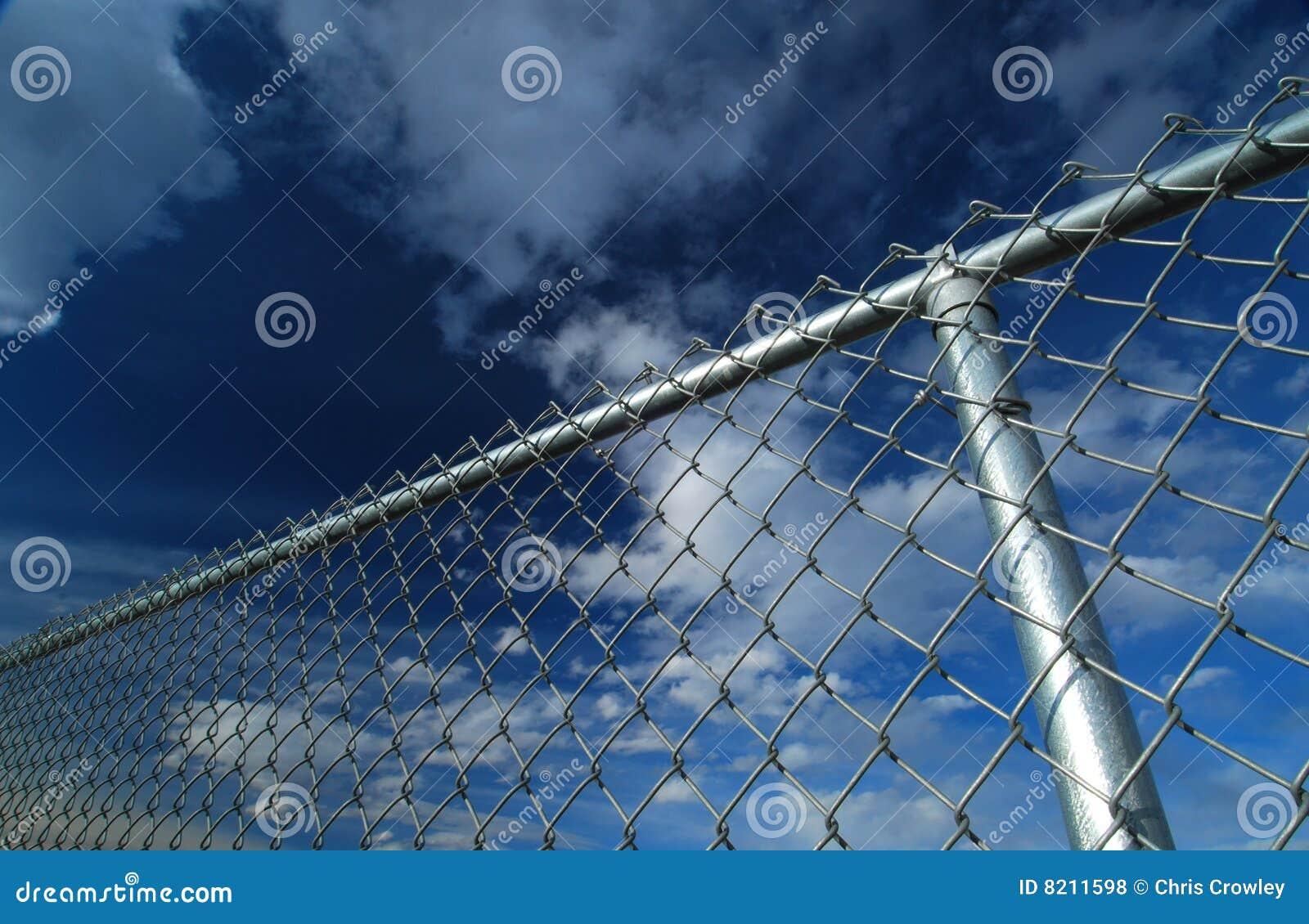Essay on Fences Against Freedom