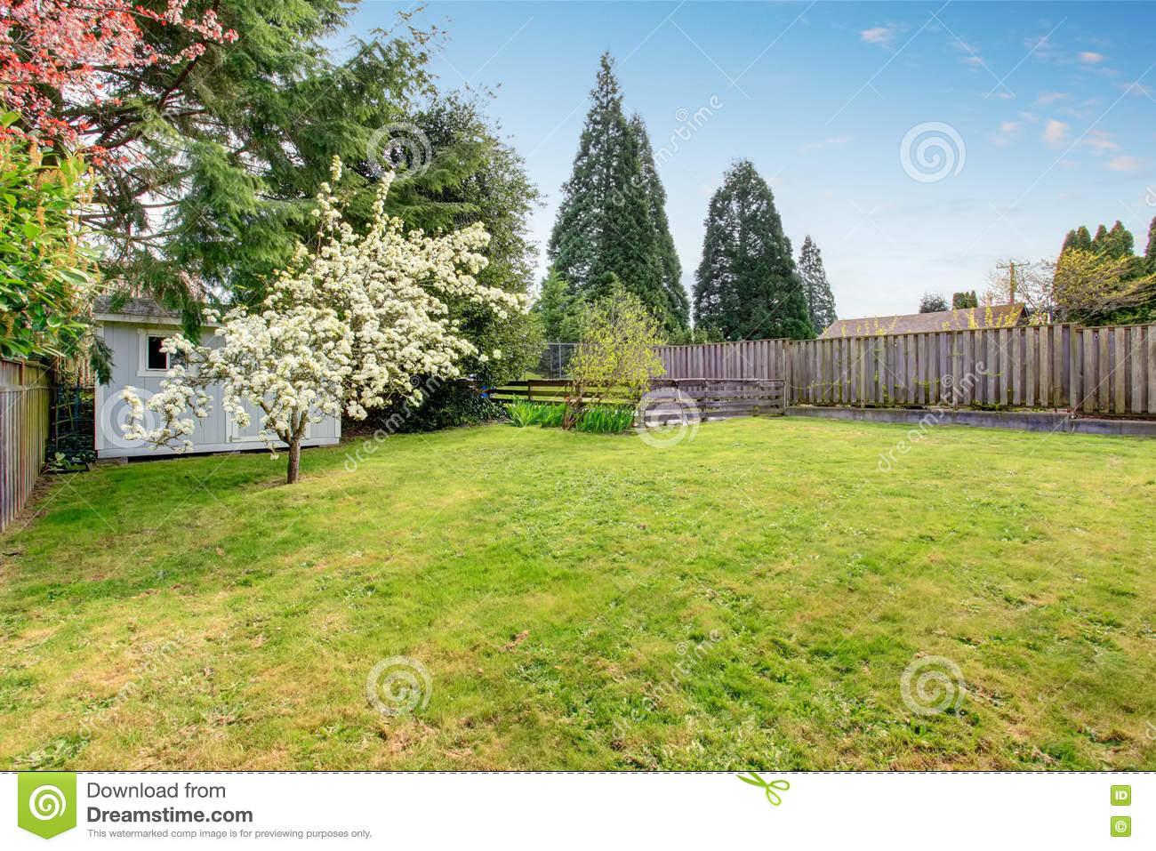 Fenced Backyard With Grass Filled Garden And Small Shed Stock Photo