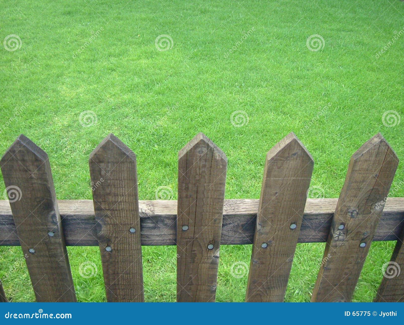Fenced lawn