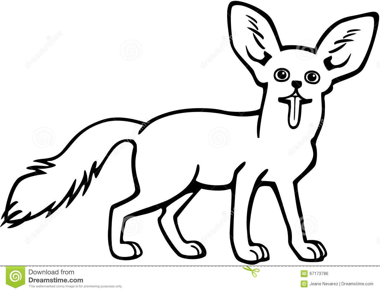Line Drawing Of Desert Animals : Fennec fox stock vector image of little furry