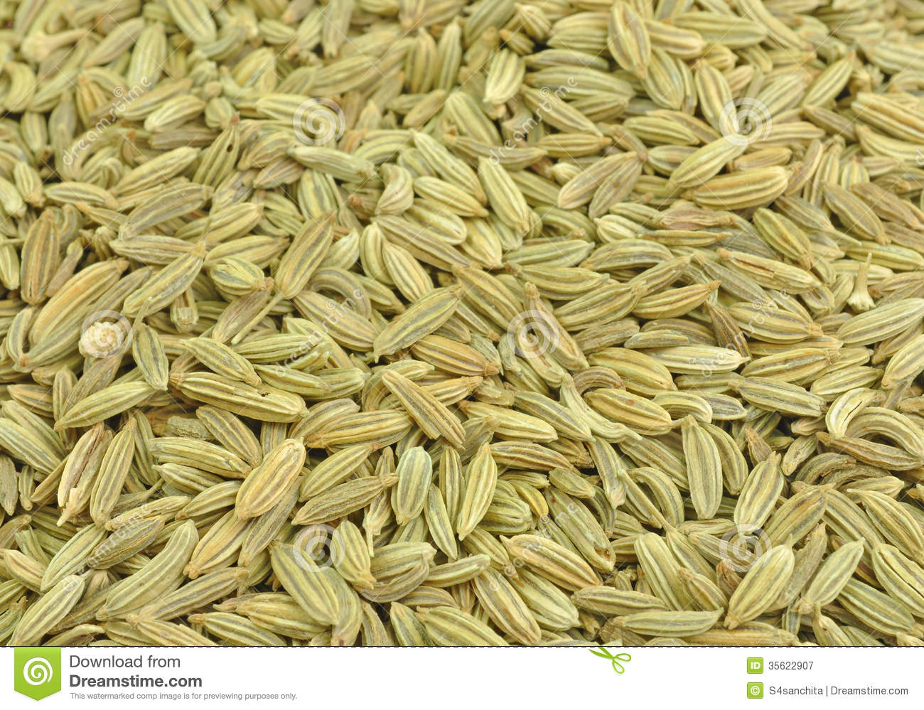 how to take fennel seeds