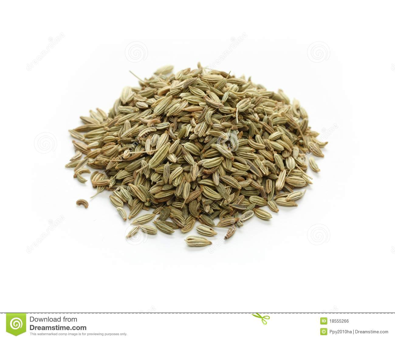 Fennel Seeds  Indian S...
