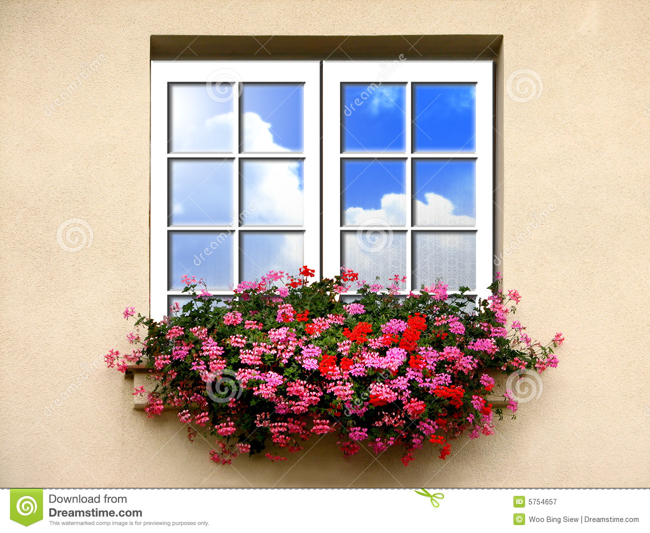 fenster mit blumen stockbild bild von wand glas drau en 5754657. Black Bedroom Furniture Sets. Home Design Ideas