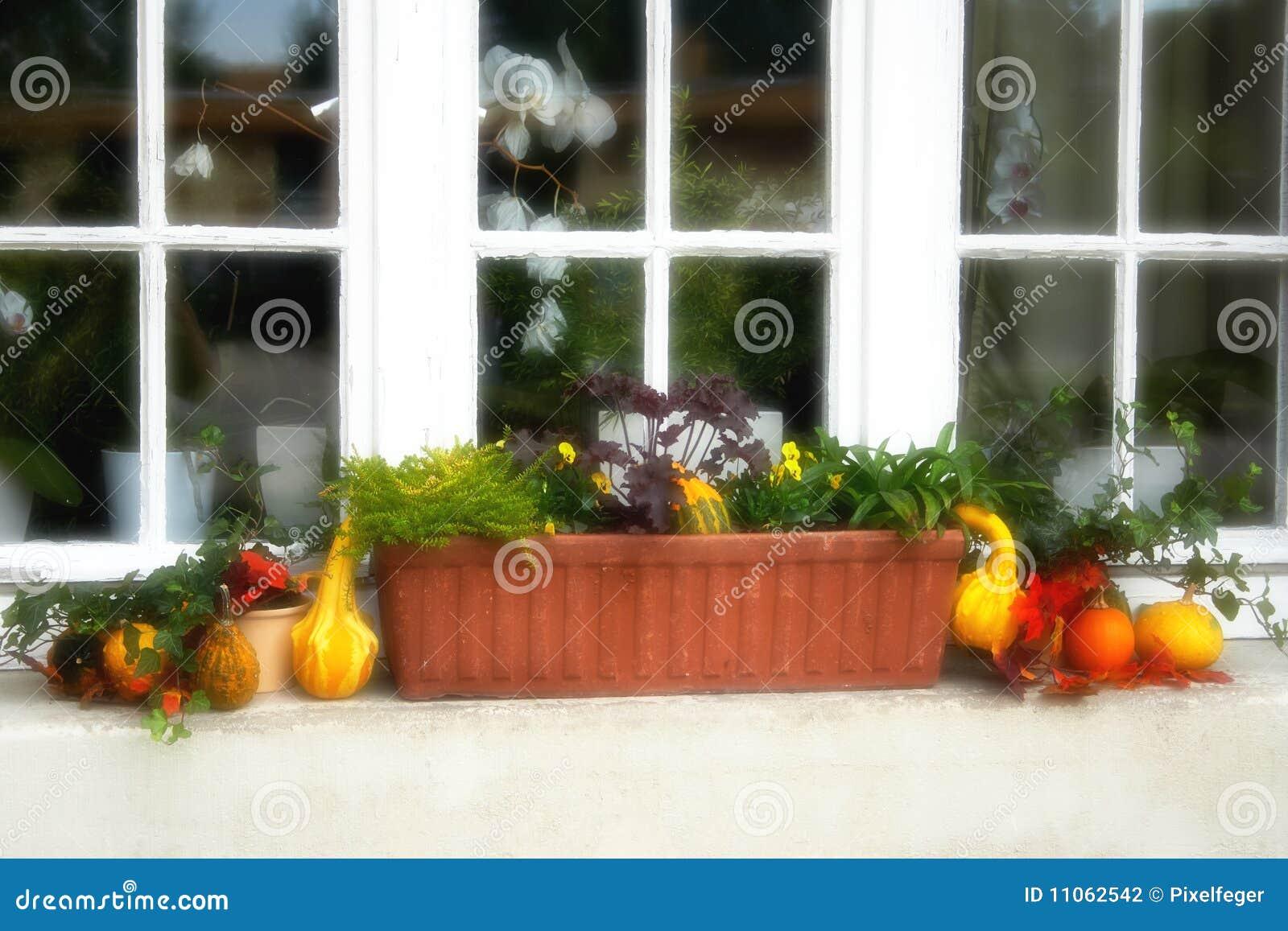 Fenster mit Blumenkasten stockfoto. Bild von häuschen - 11062542