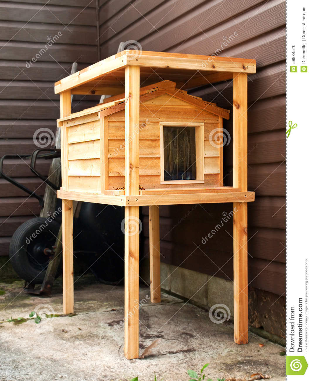 pulpit cat house ~ feral cat house stock photo  image 59984570