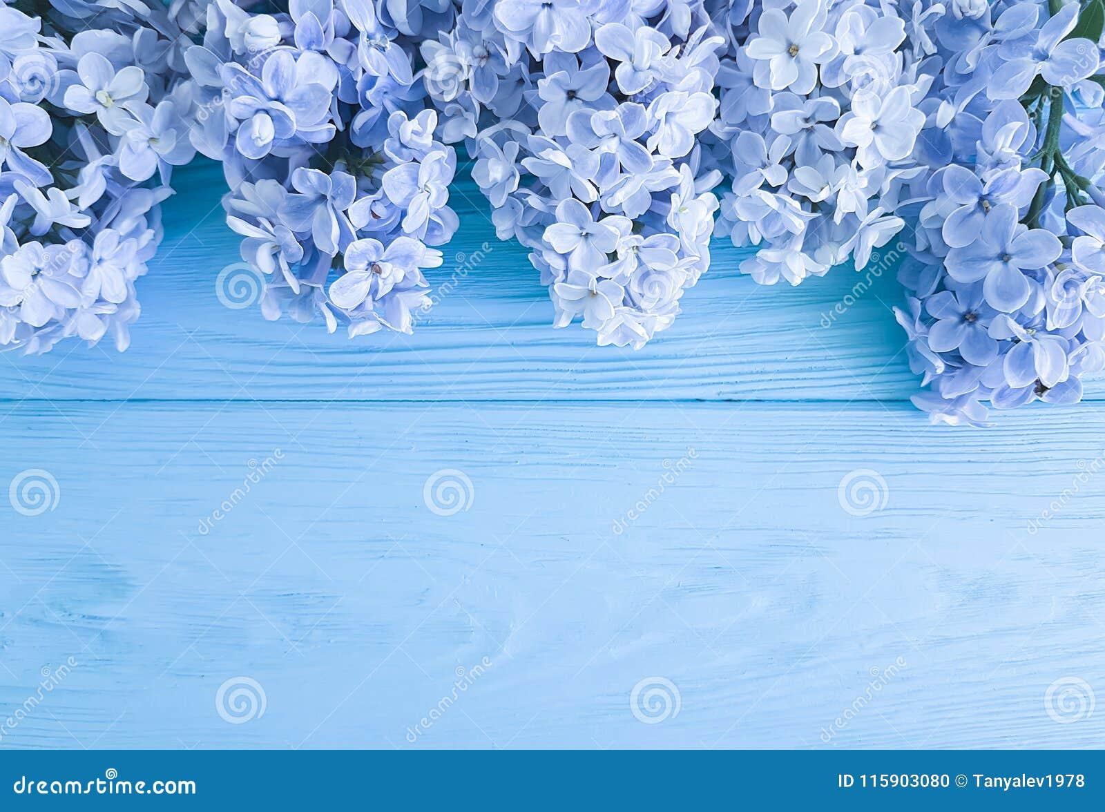 Feriado lilás do presente do dia de mães do aniversário do cumprimento da primavera do cargo da decoração da flor fresca bonita e