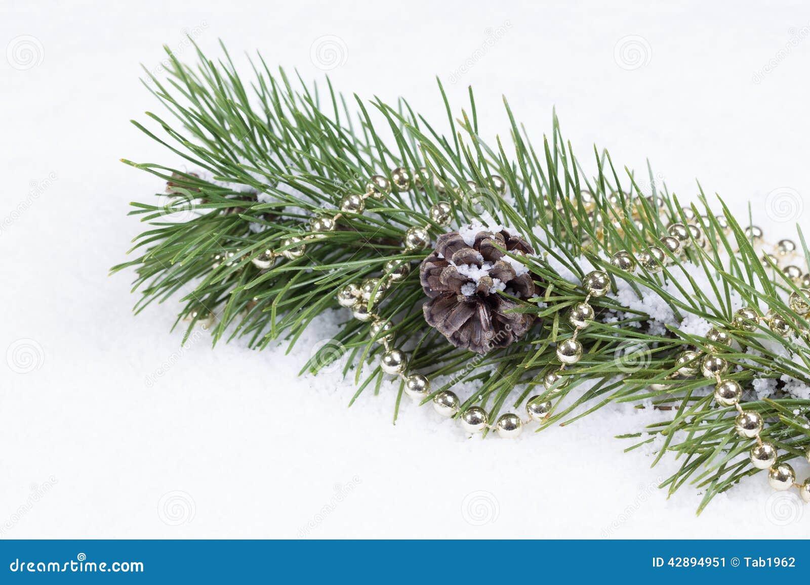 Feriegranfilial på snö