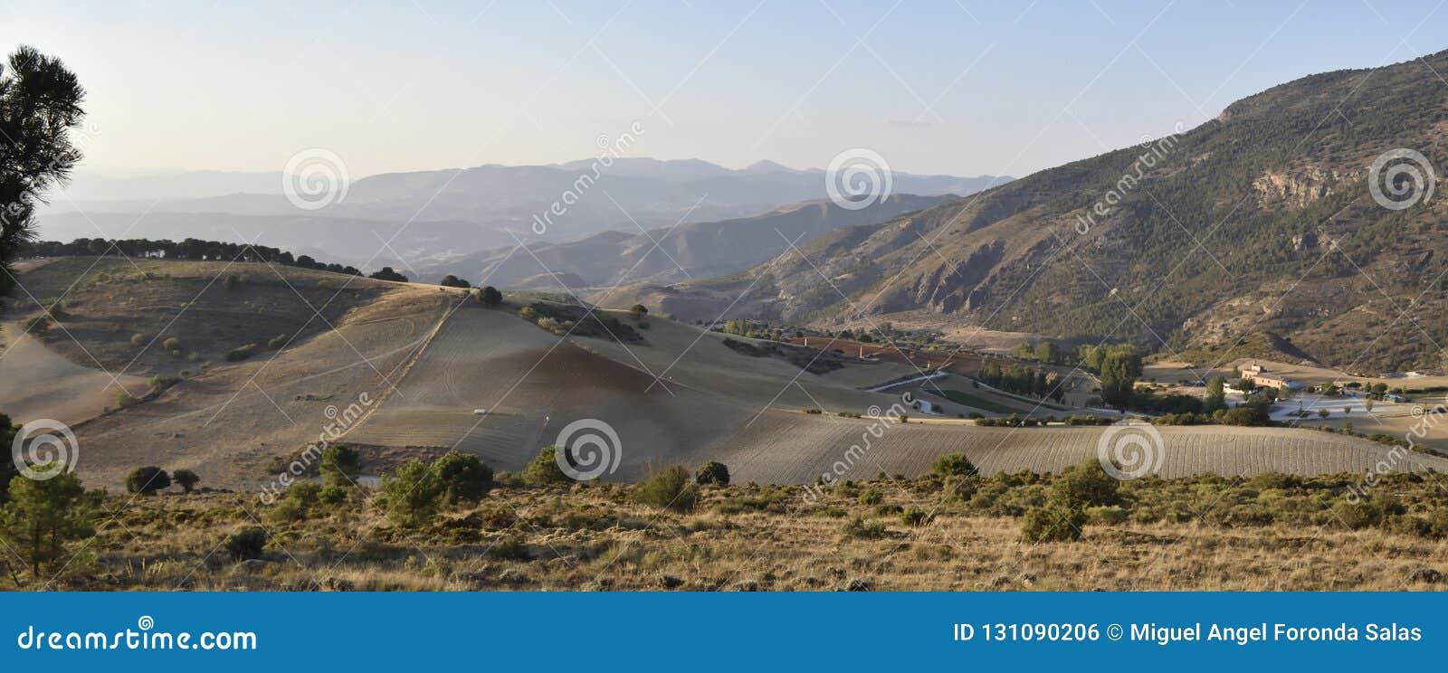 Ferme avec le champ labouré des céréales et des montagnes à l arrière-plan