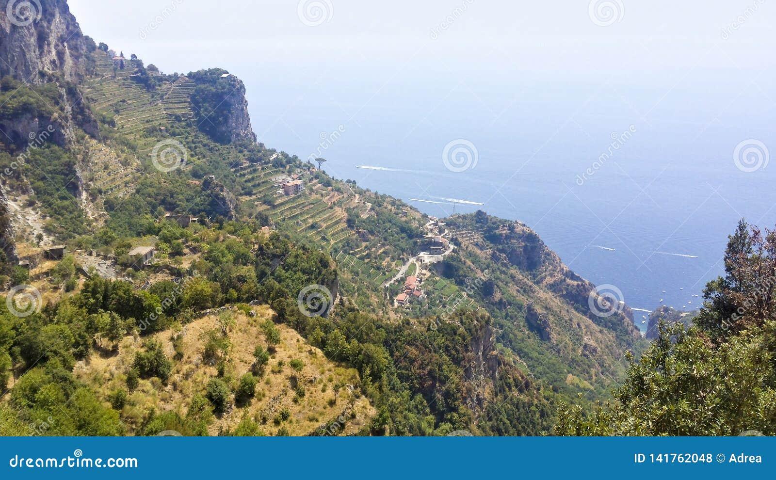 Fermes de niveau de vigne de ville de Pianillo de r?gion de Naples