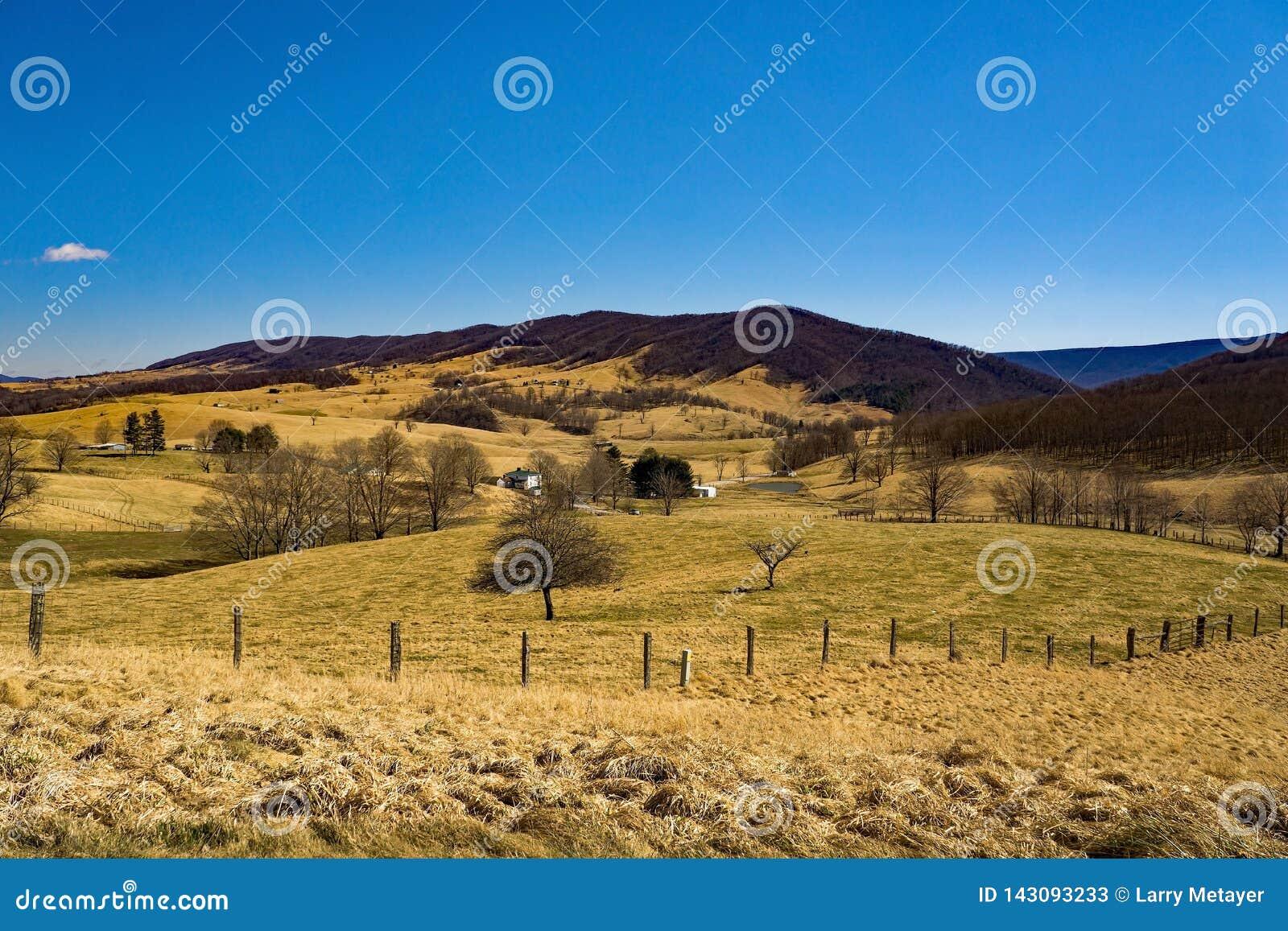 Fermes en vallée bleue d herbe