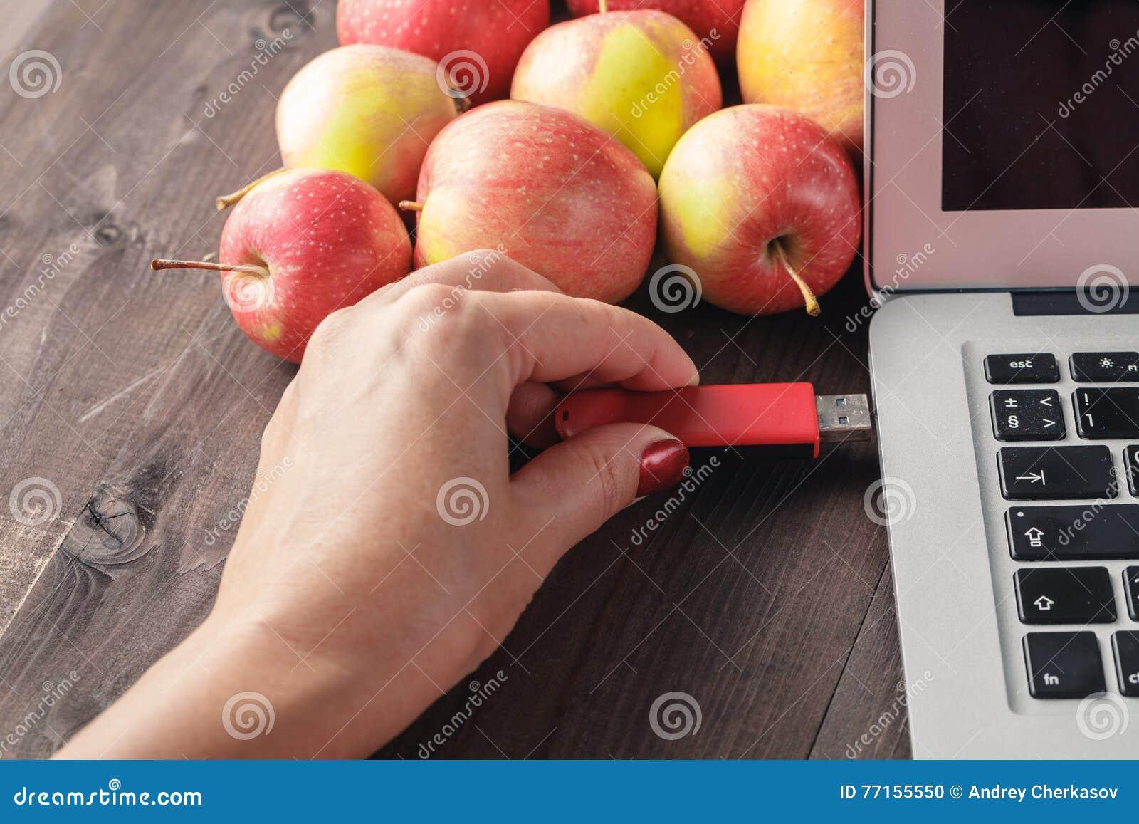 Fermez-vous d une main de femme branchant pendrive rouge sur un ordinateur portable