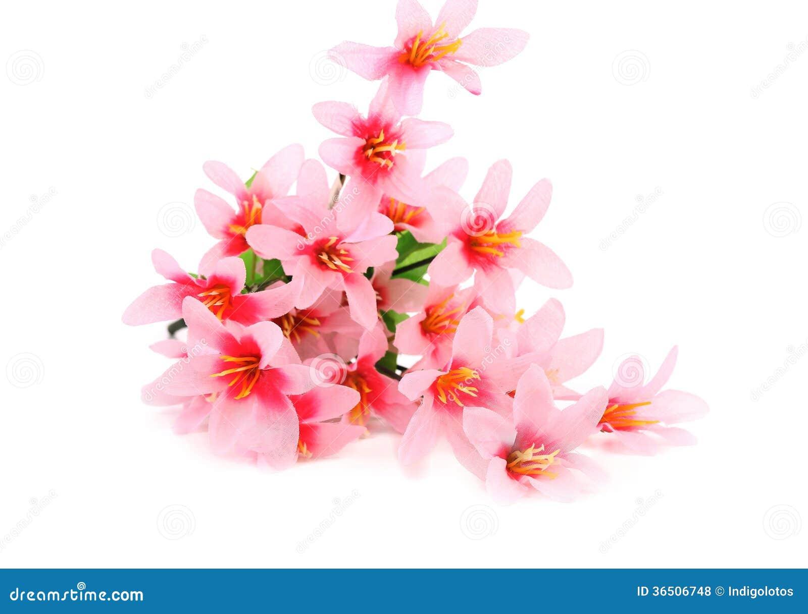 Fermez-vous des fleurs roses.