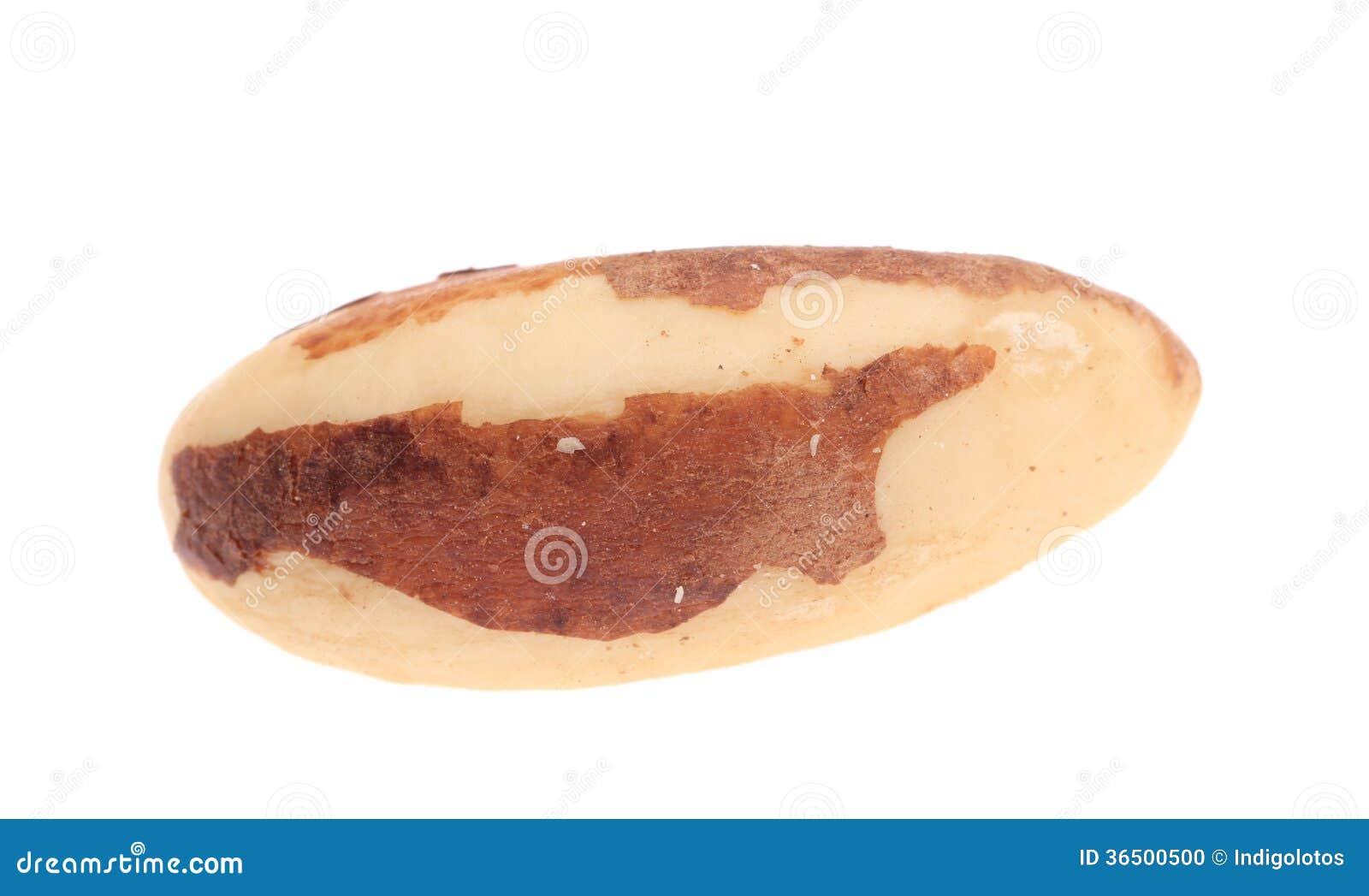 Fermez-vous des noix du brésil.
