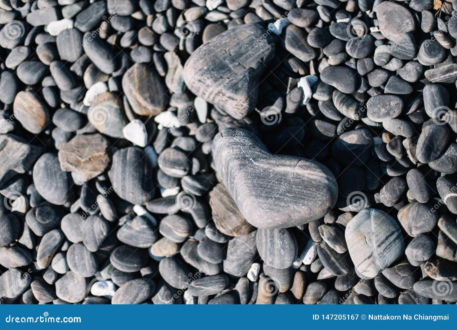 Fermez-vous des pierres arrondies noires de plage et des pierres de caillou