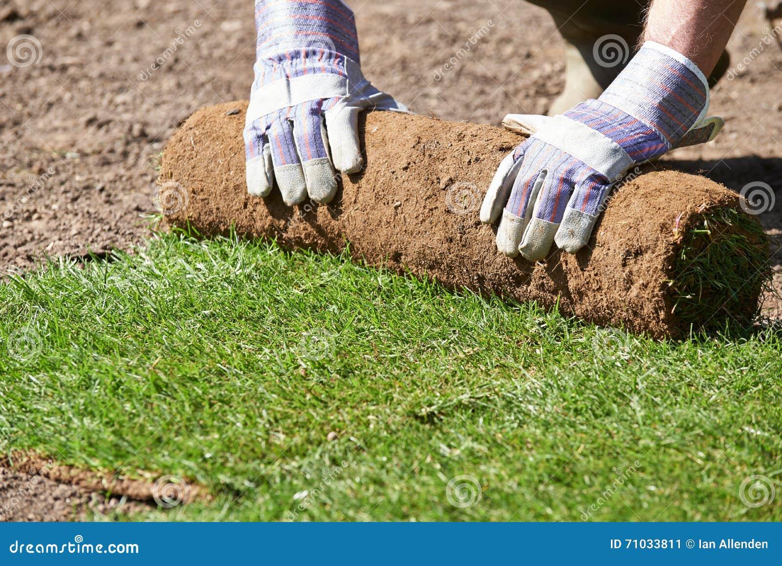 Fermez-vous pelouse de Laying Turf For de jardinier de paysage de la nouvelle