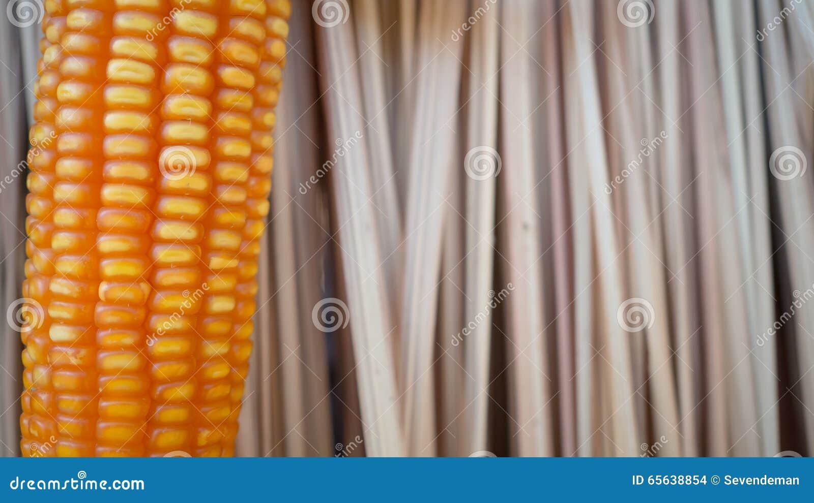 Fermez-vous vers le haut du maïs