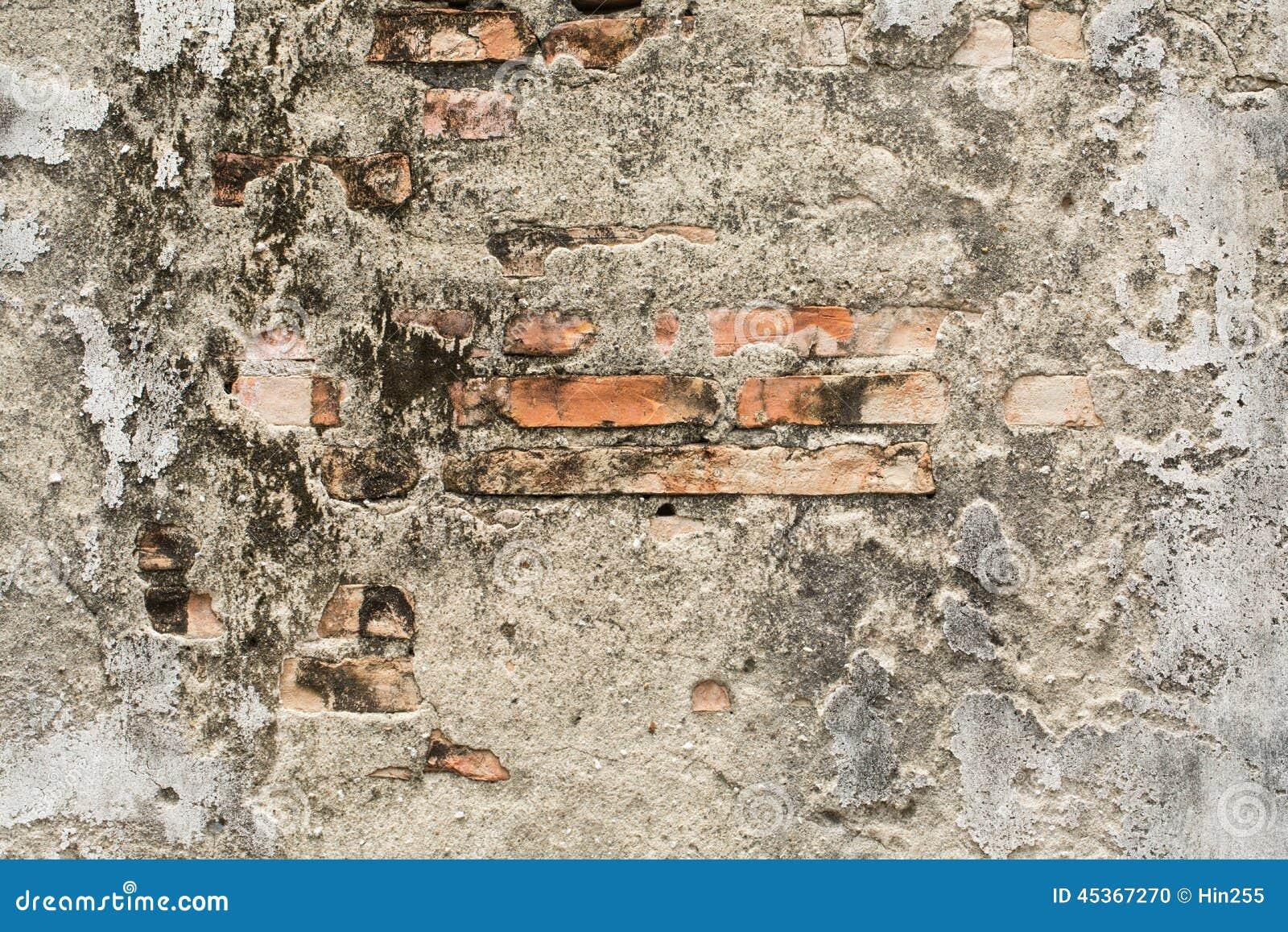 Fermez-vous vers le haut du mur de roche avec le fond