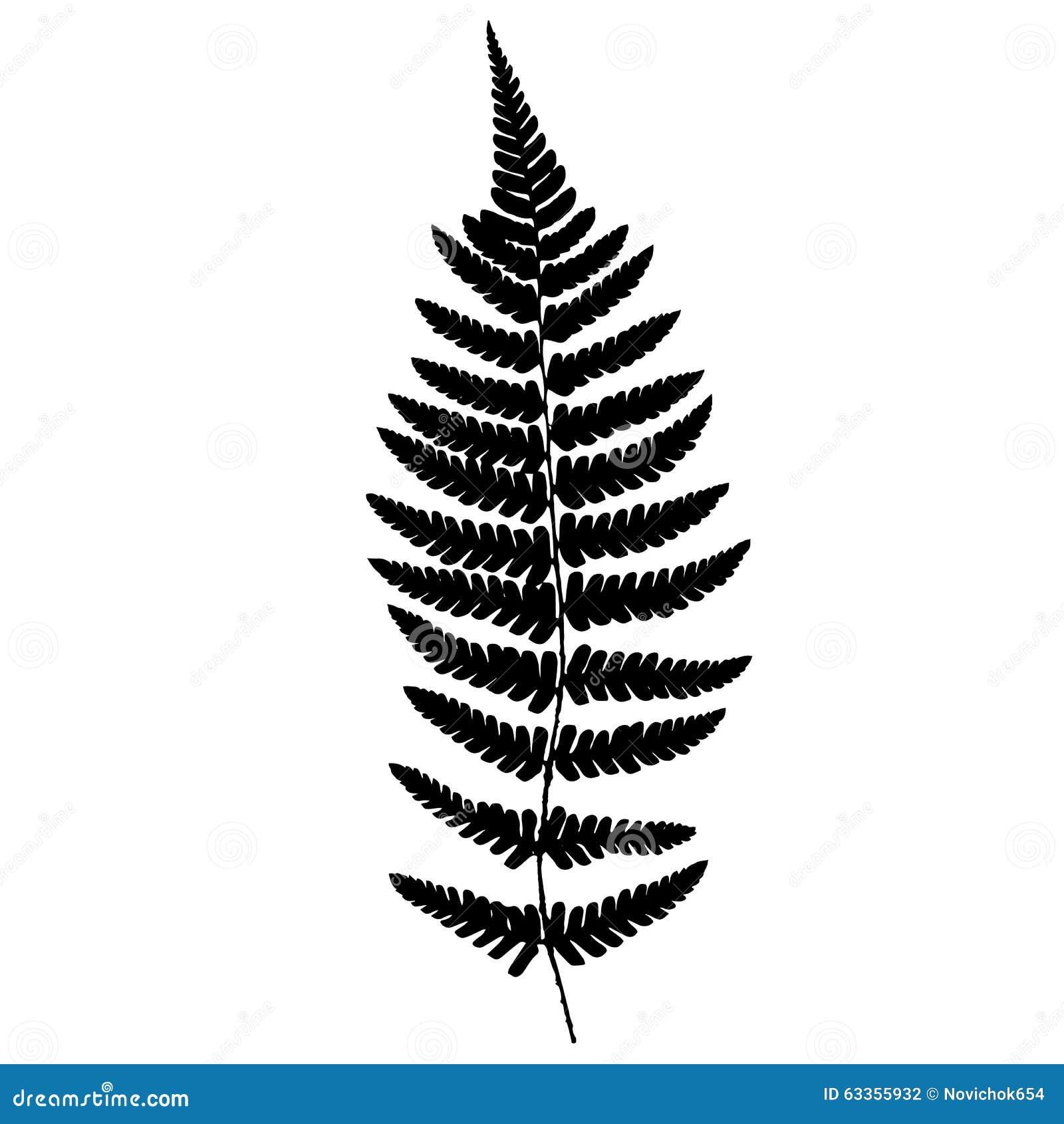 Stock Illustration Fern Frond Black Silhouette Vector Illustration Image63355932 on Spring Season Clipart Black And White Clip