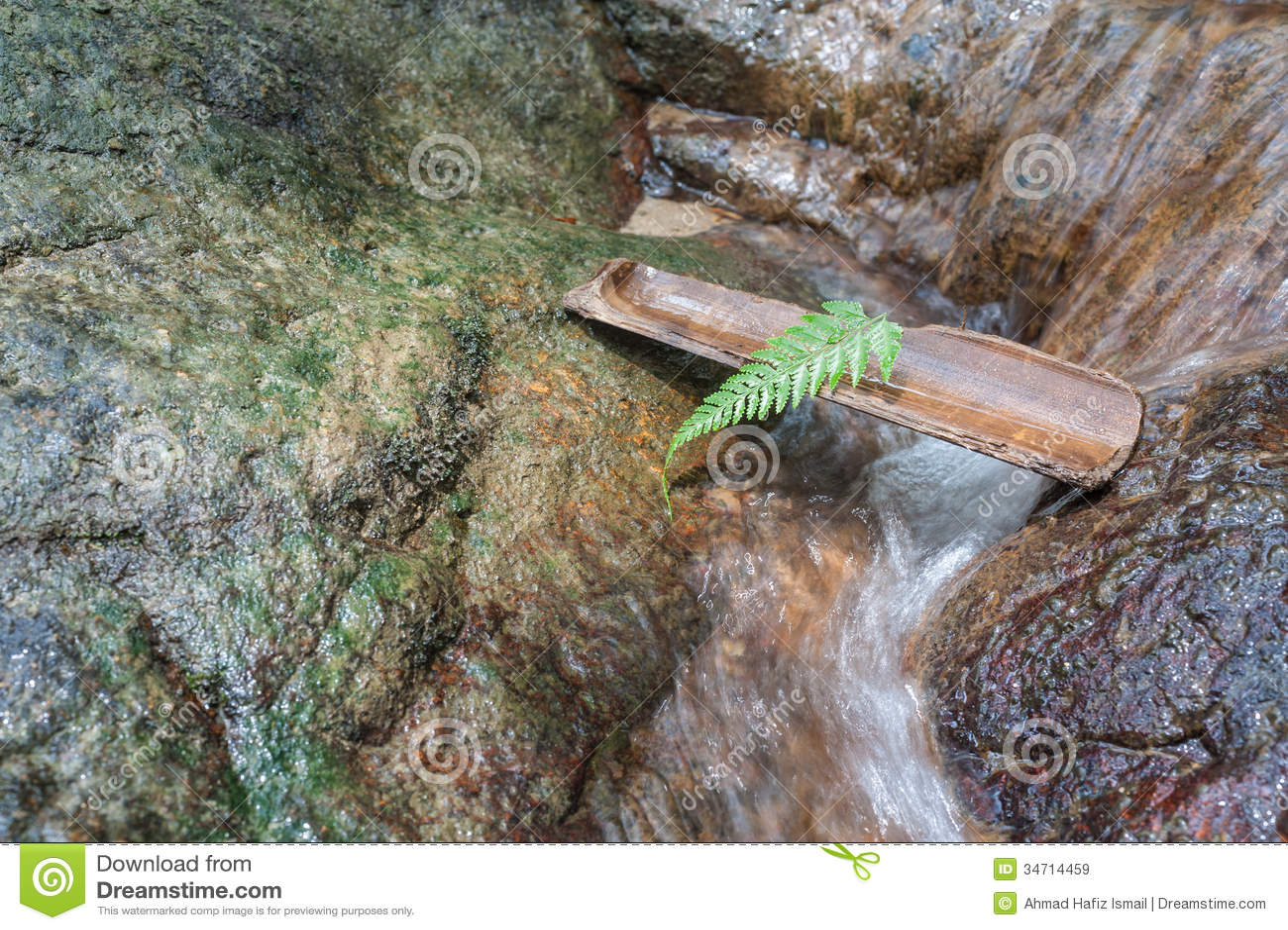 Fern Leaf Auf Bambus Am Wasserfall Als Feiertagskonzept Stockbild