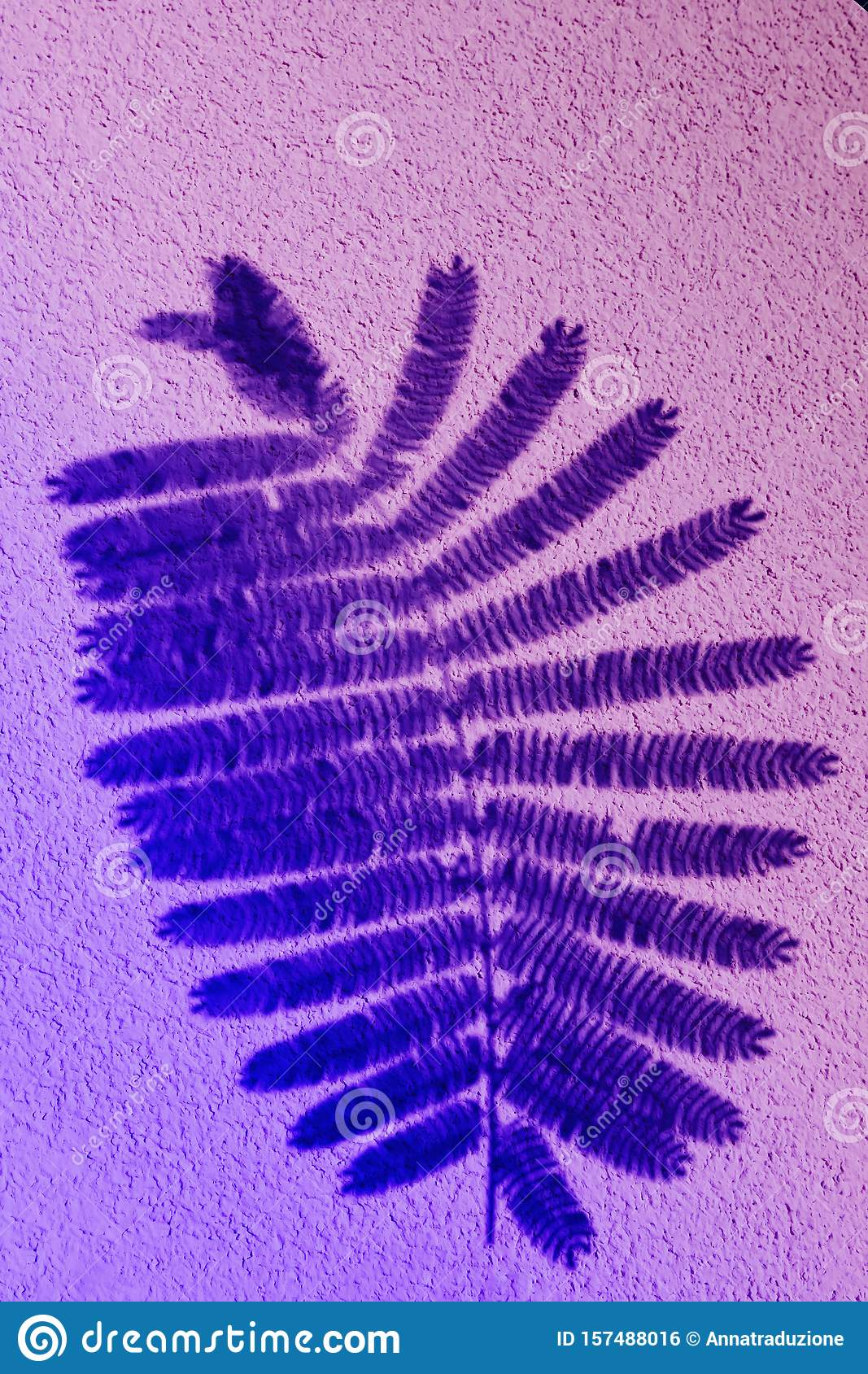 Fern leaf in color gradient.abstract leaves and shadow background.For create design layout, neon leaves composition