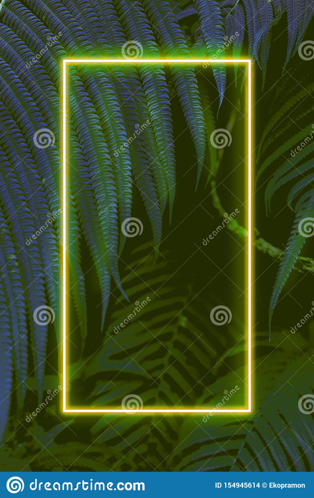 Fern leaves with colorful neon light, free space for text