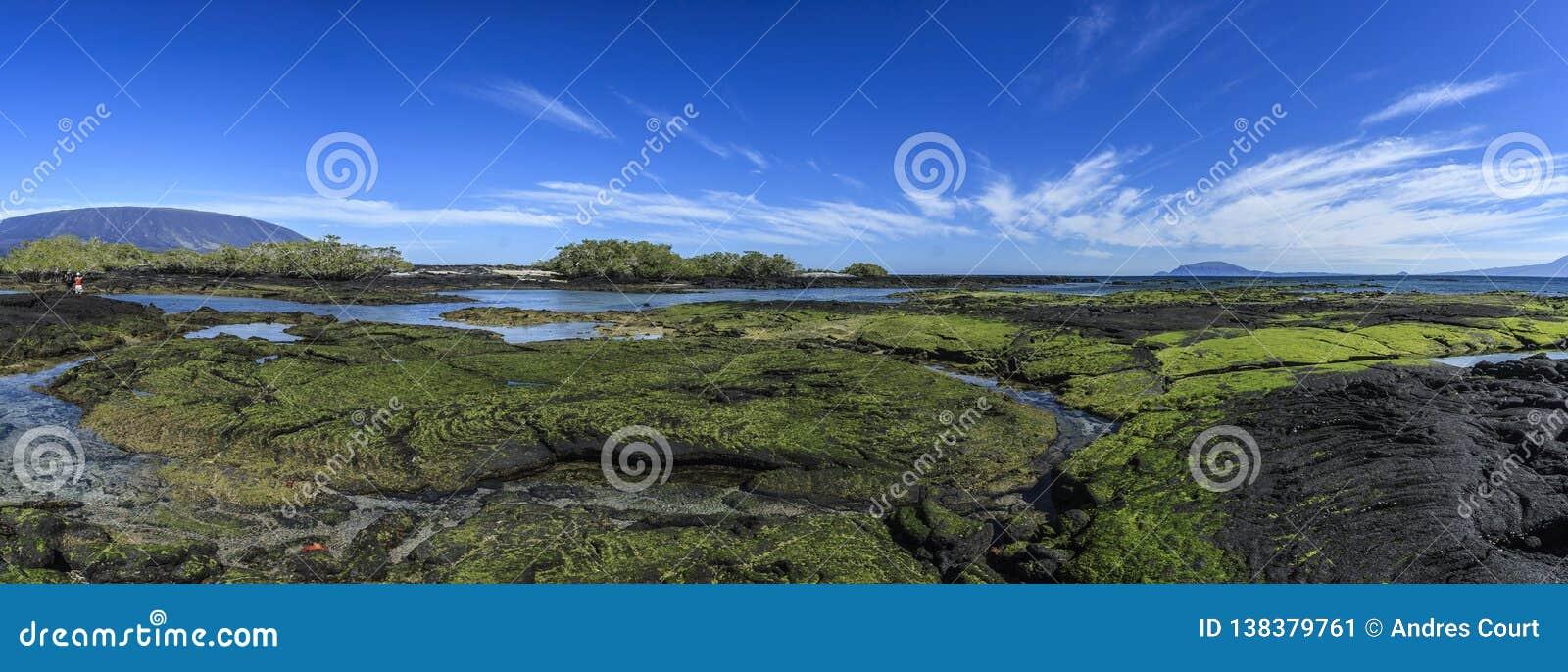 Fernandina landscapes galapagos islands