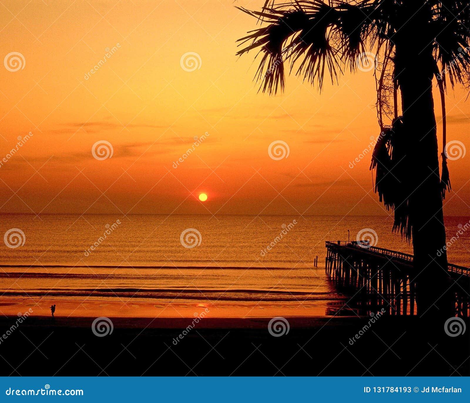Fernandina plaża, Floryda