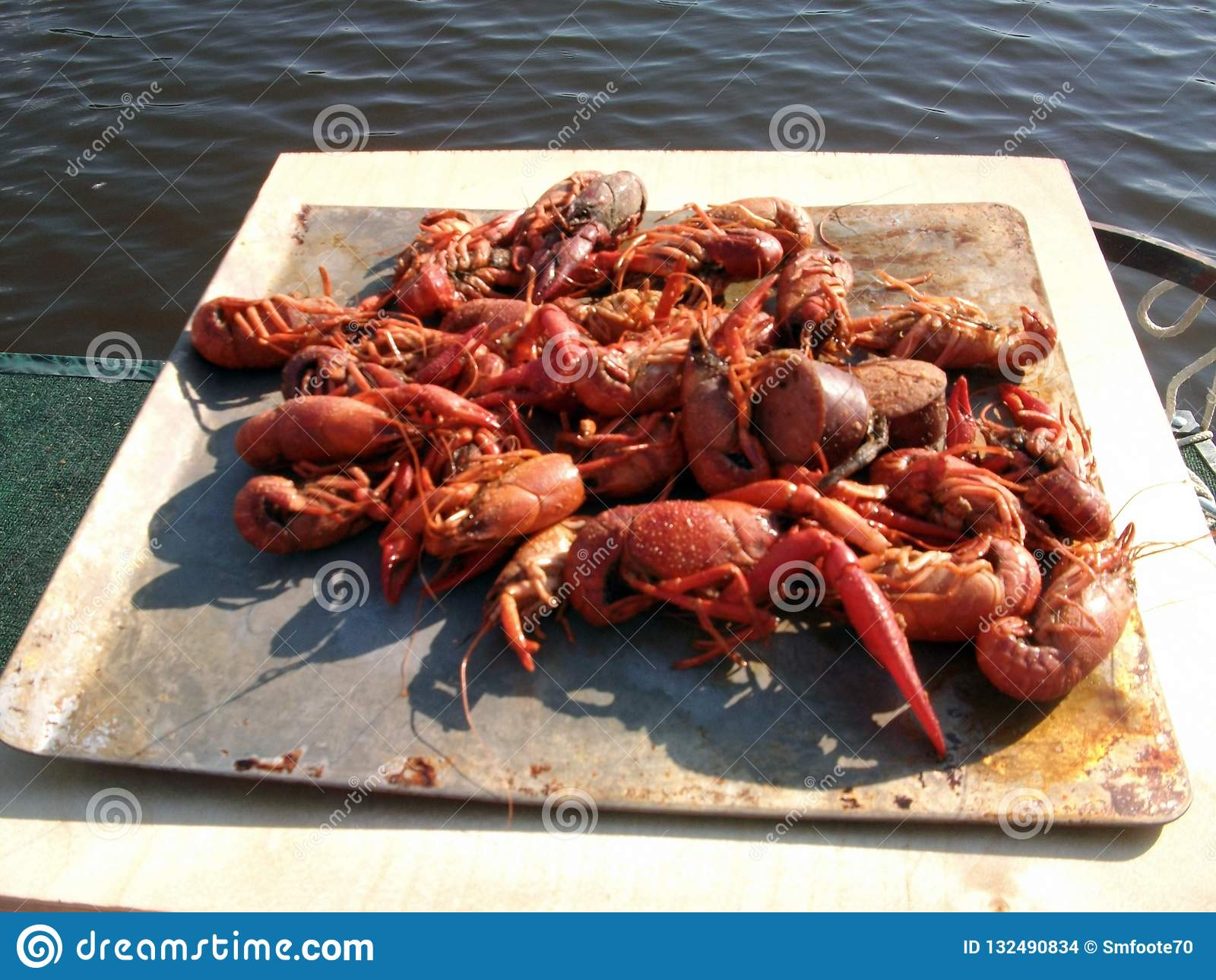 Festin de poissons de jabot