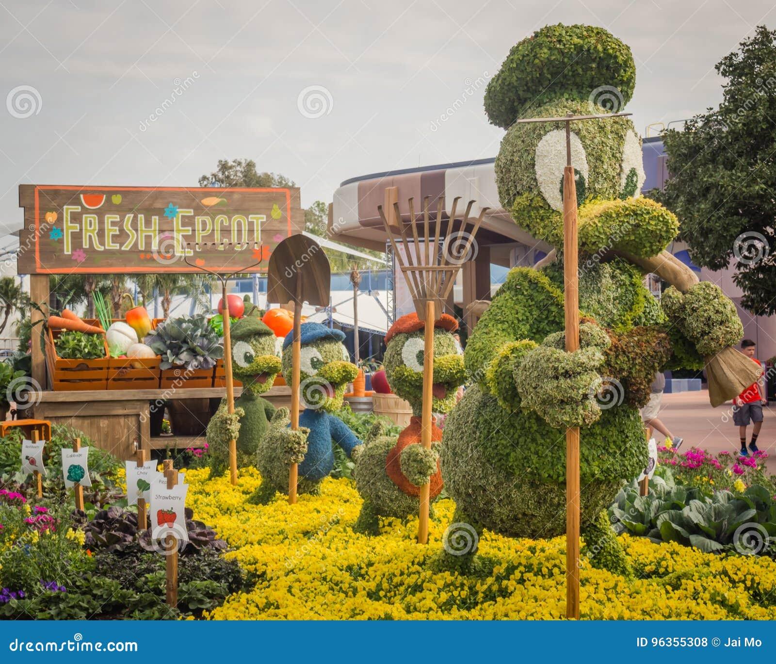 Festival de Donald Duck Topiary Epcot Flower Garden