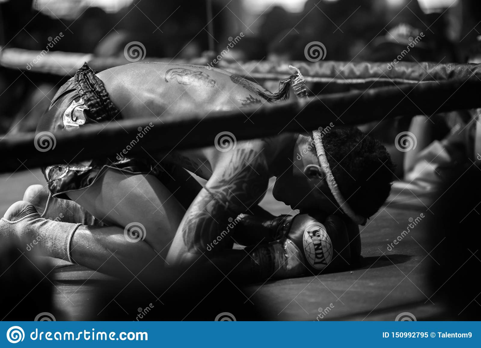 Festival tailandés de los boxeadores