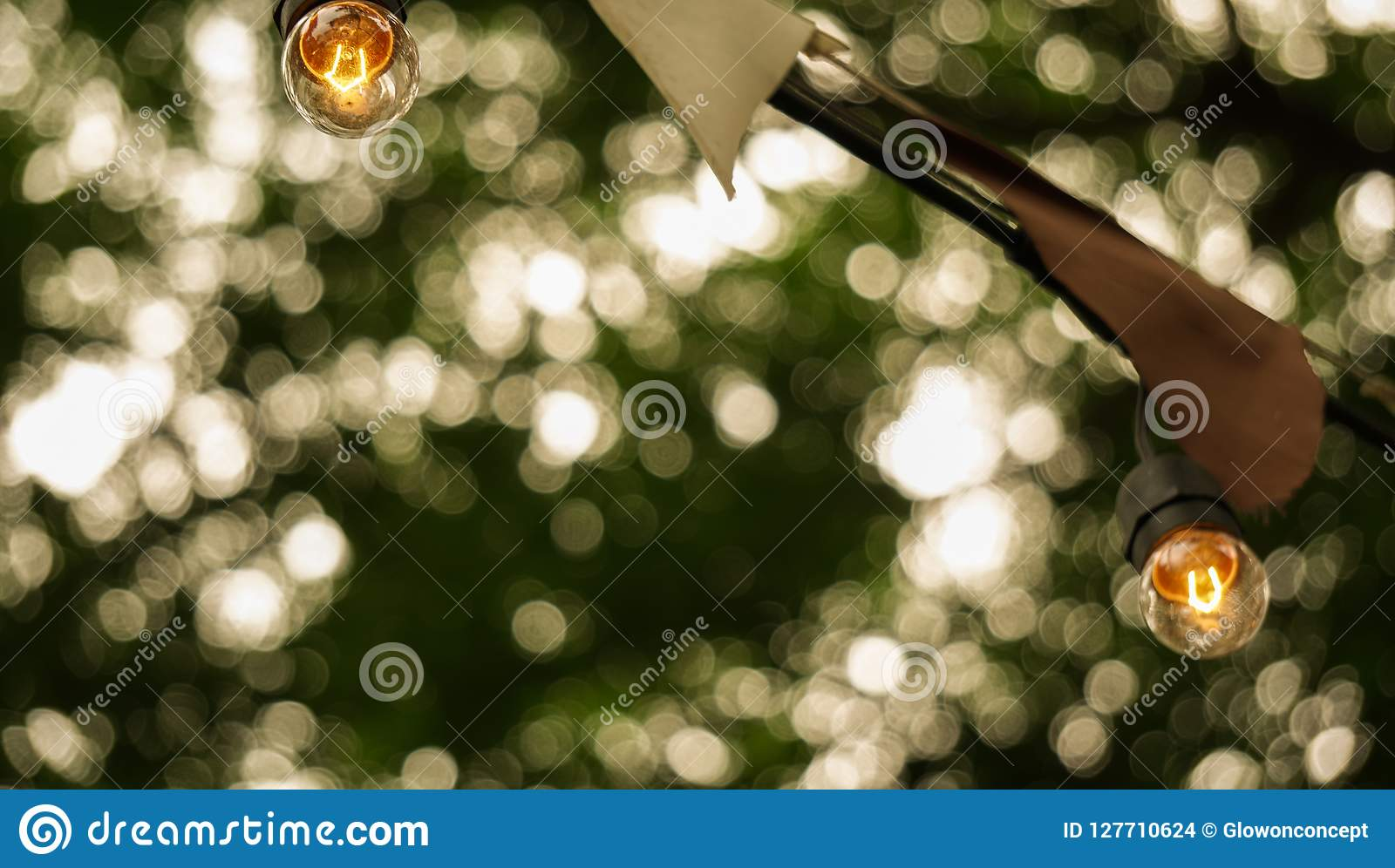 festive party light bulbs hanging with green tree background cop
