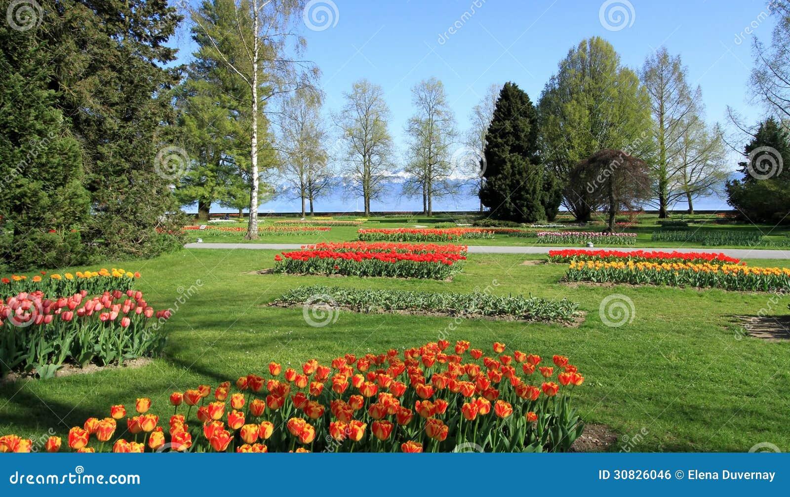 Festività dei tulipani di primavera, Morges, Svizzera