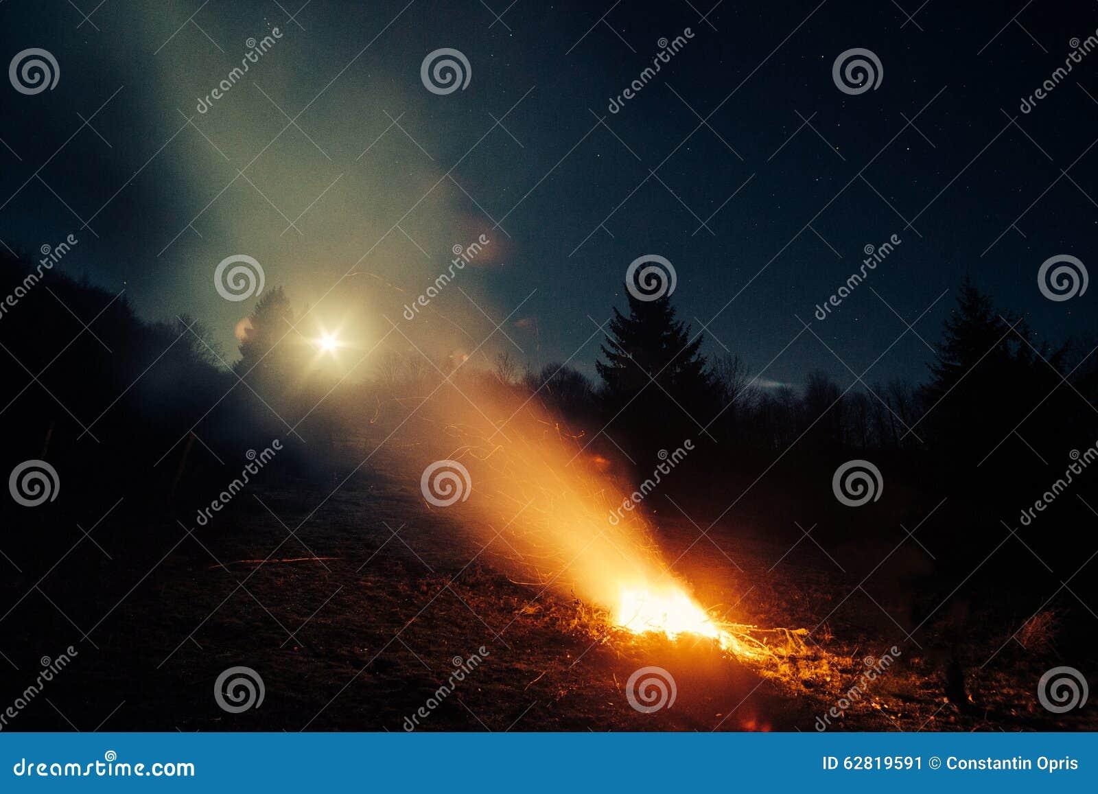bois vol la nuit - photo #9